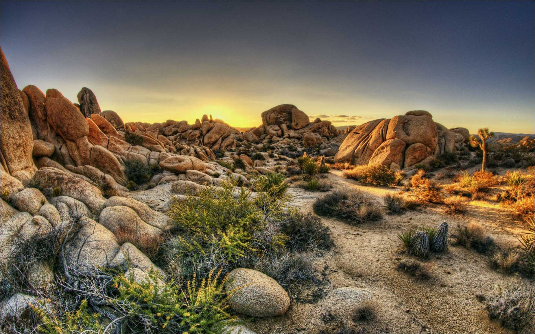Joshua Tree National Park Wallpapers Landscape Photograph Driving