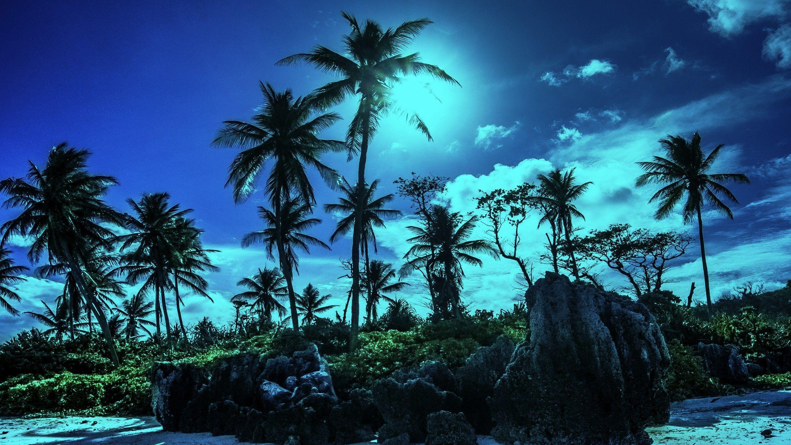 обои тропические острова размер 360x720