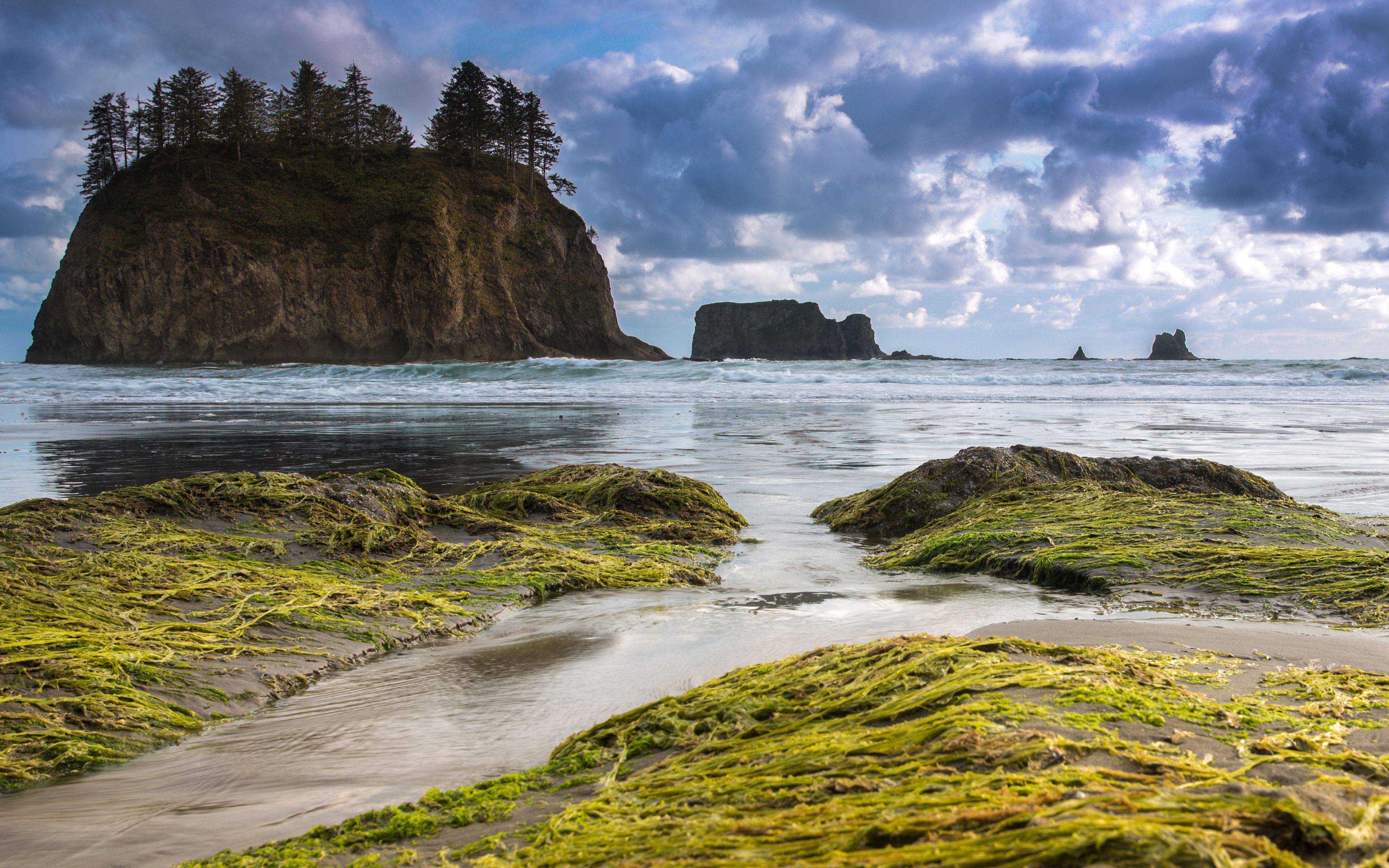 Olympic Peninsula, Olympic National Park, Washington, USA