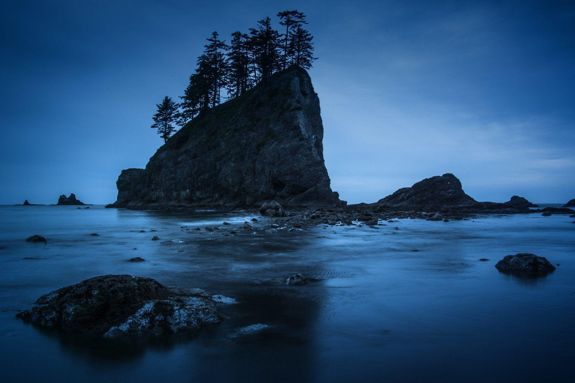 olympic national park washington night rock beach tree HD wallpapers