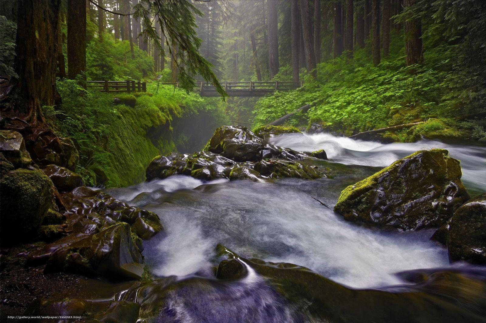 Download wallpapers Sol Duc Falls, Olympic National Park