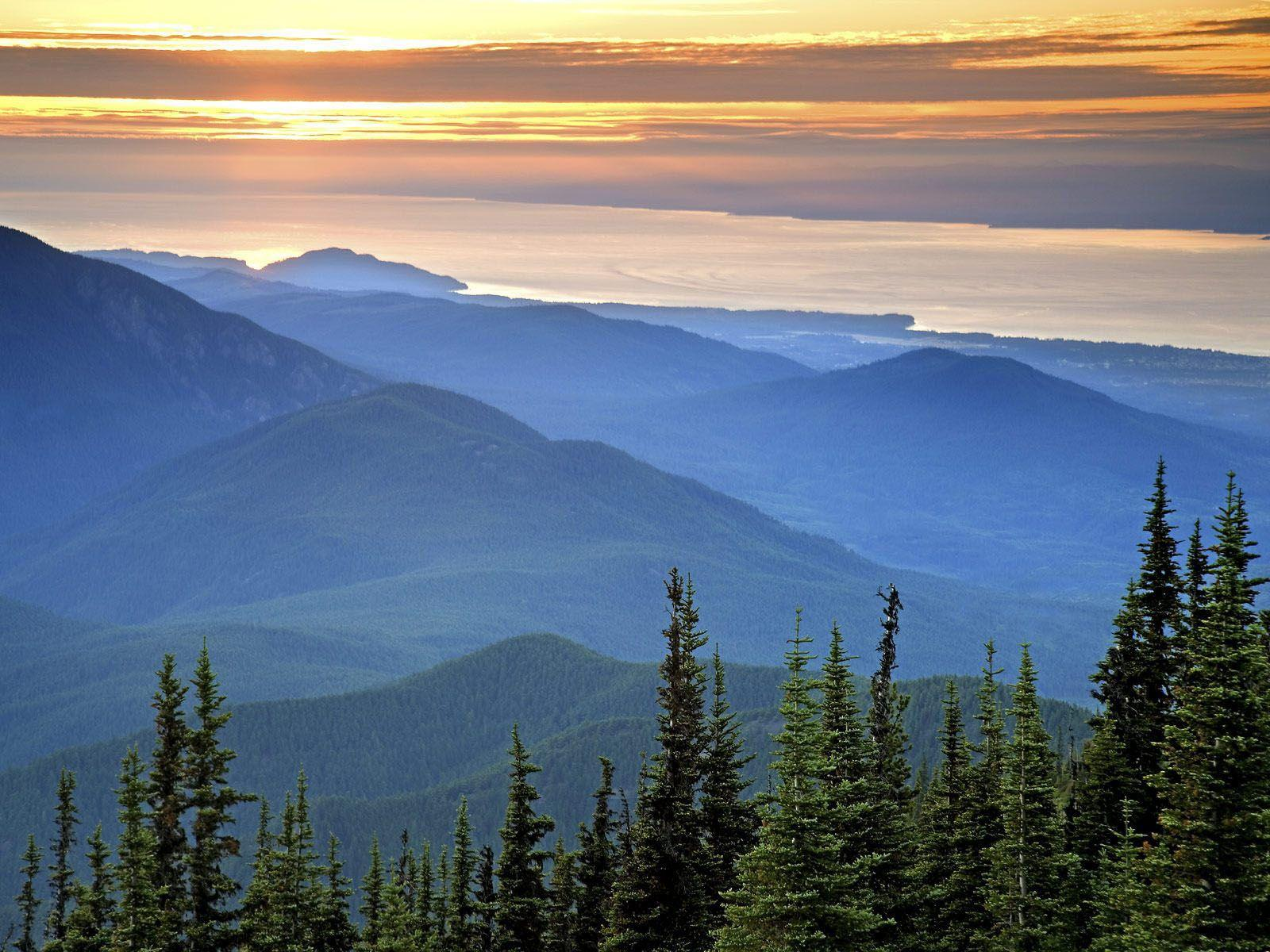 wallpaper: Olympic National Park Wallpapers