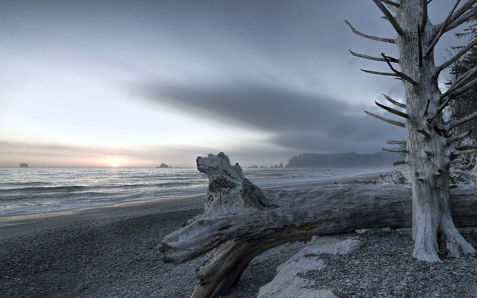 rialto beach olympic national park landscape HD wallpapers