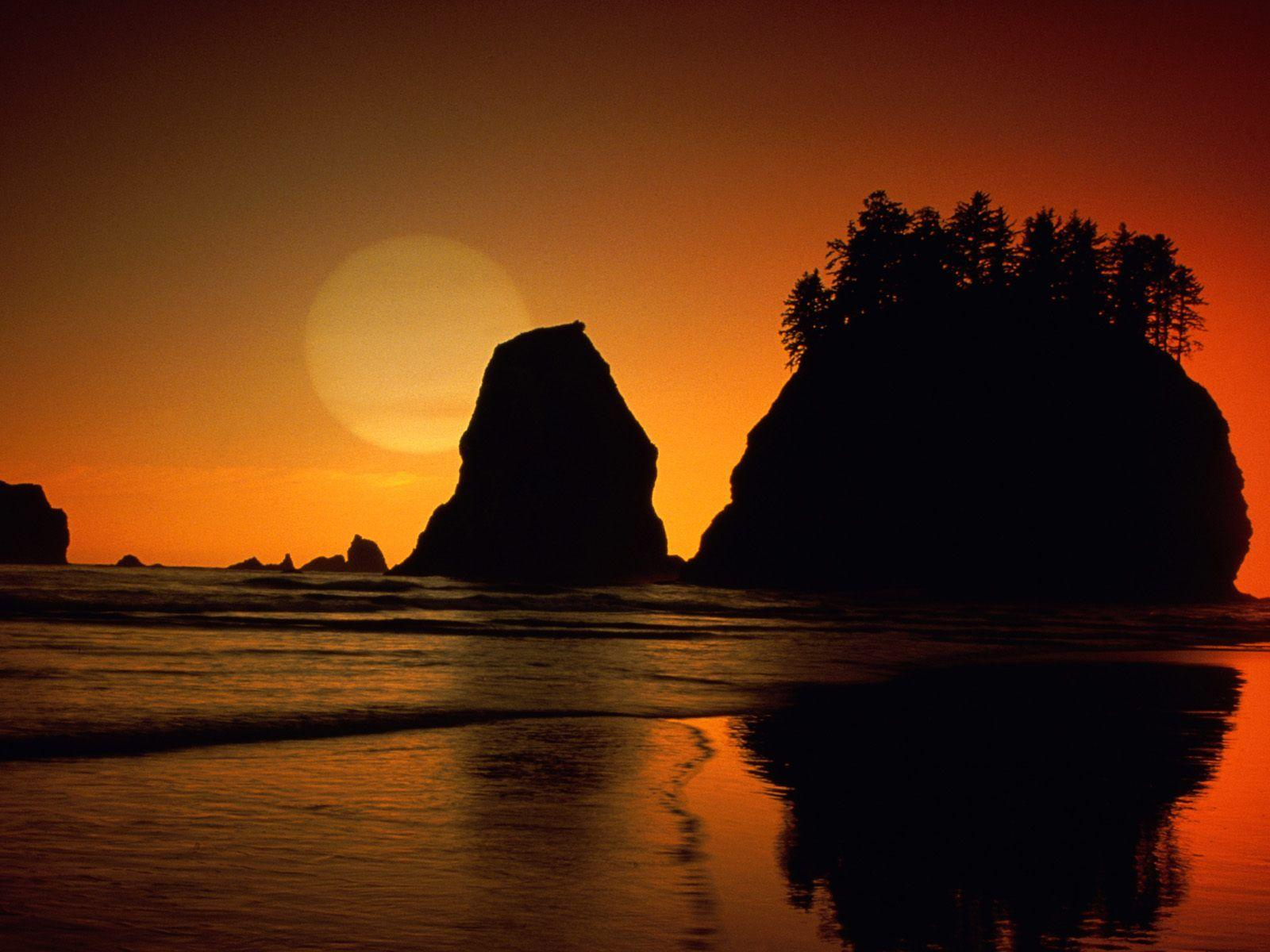 Free Second Beach Olympic National Park Washington Wallpapers