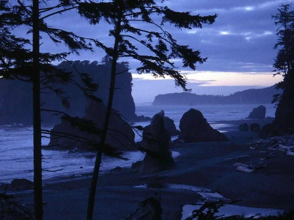 Olympic National Forest Wallpapers, Olympic National Forest Full