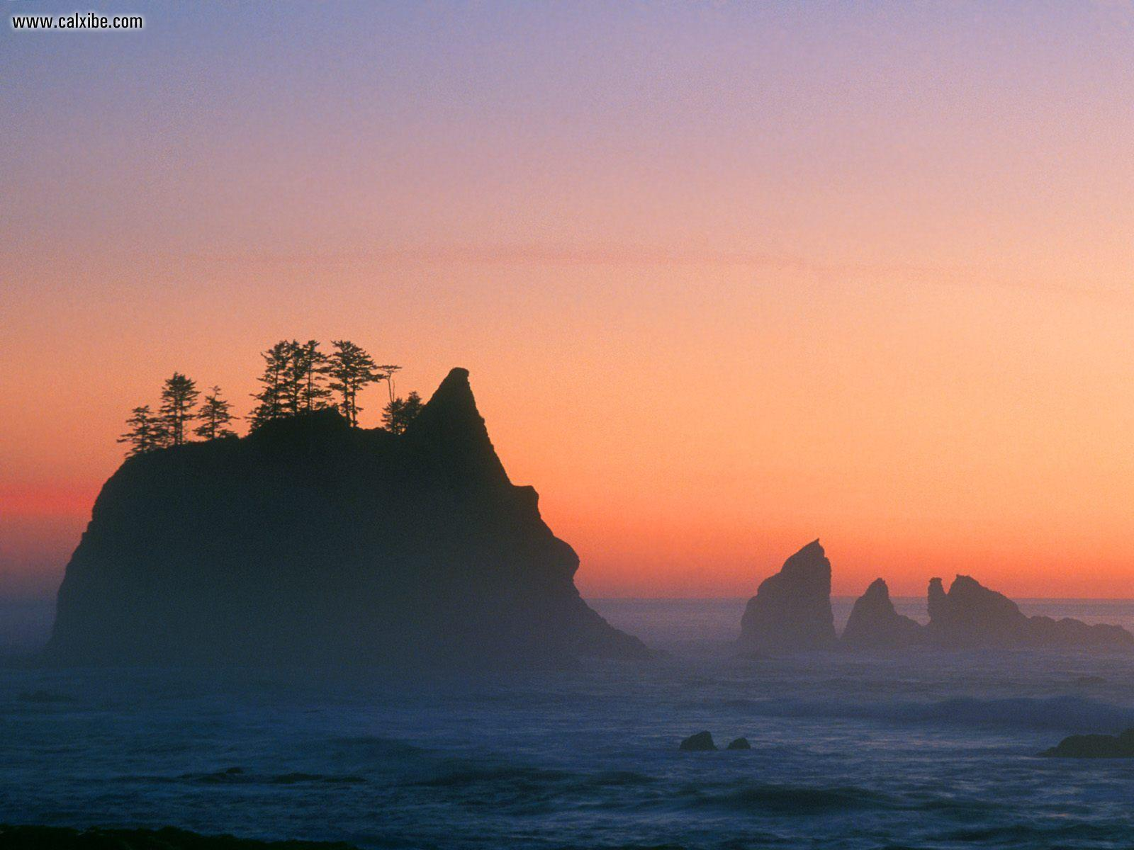 Nature: Point Of The Arches Sea Stacks Olympic National Park