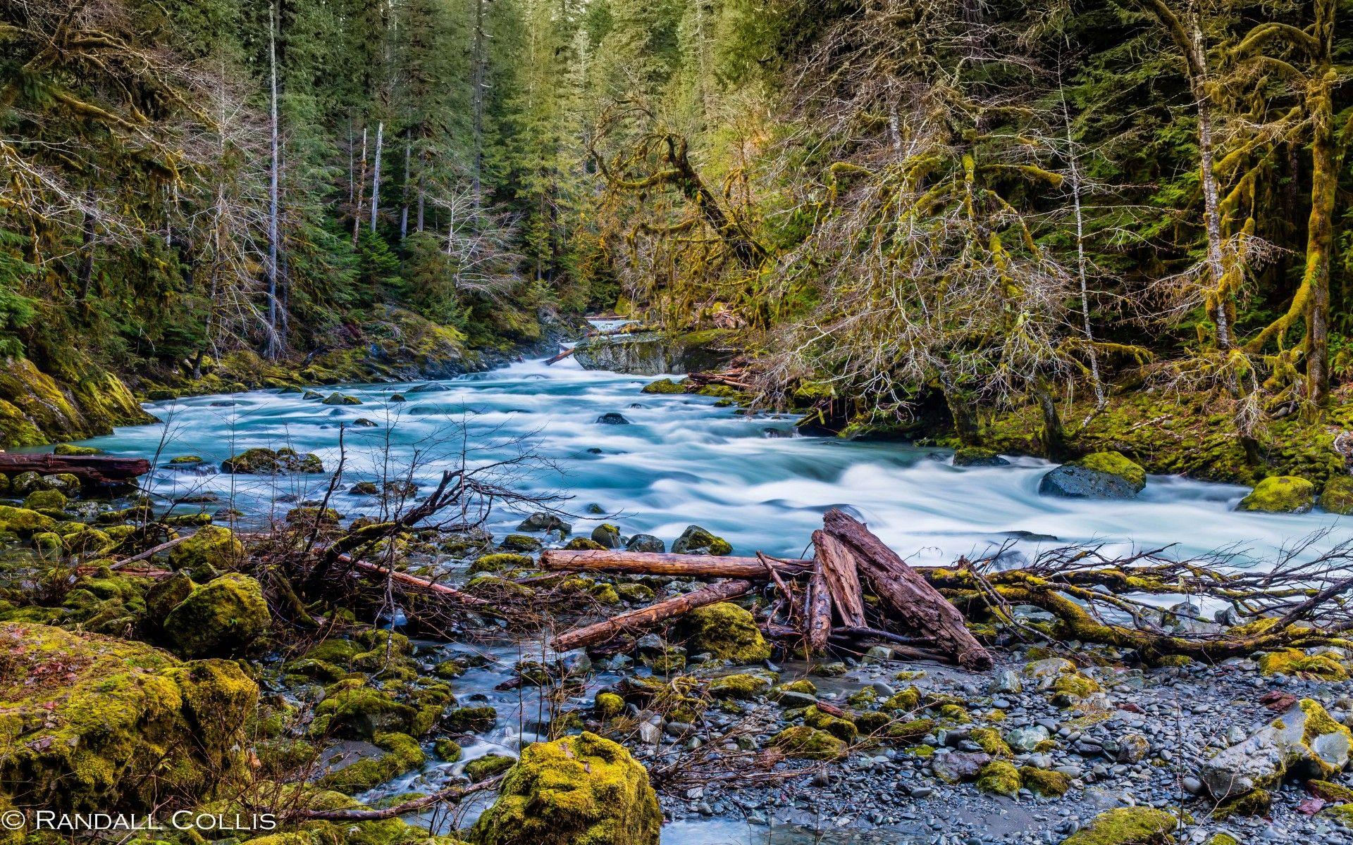 Beautiful Hd Wallpapers North Fork Skokomish River Olympic National