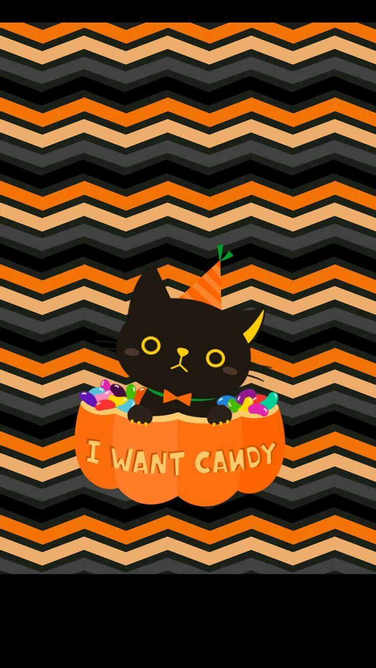 iPhone Halloween Wallpaper cute black cat | Halloween Wallpapers ...