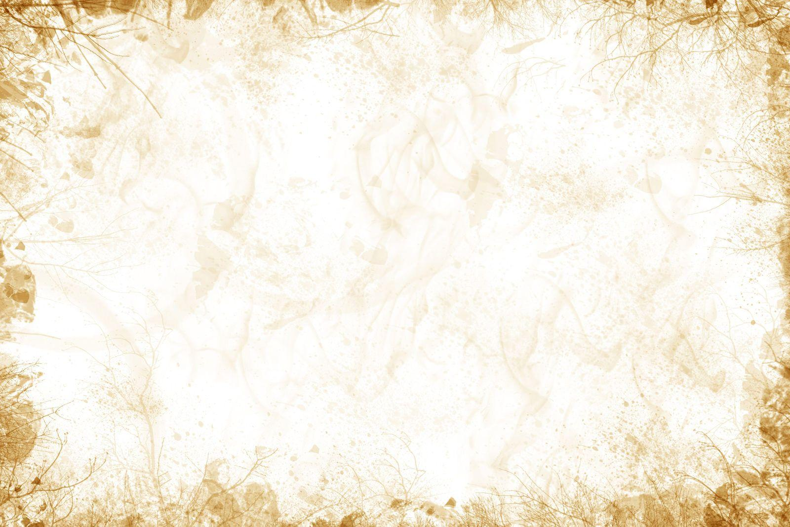White And Gold Wallpapers - Wallpaper Cave