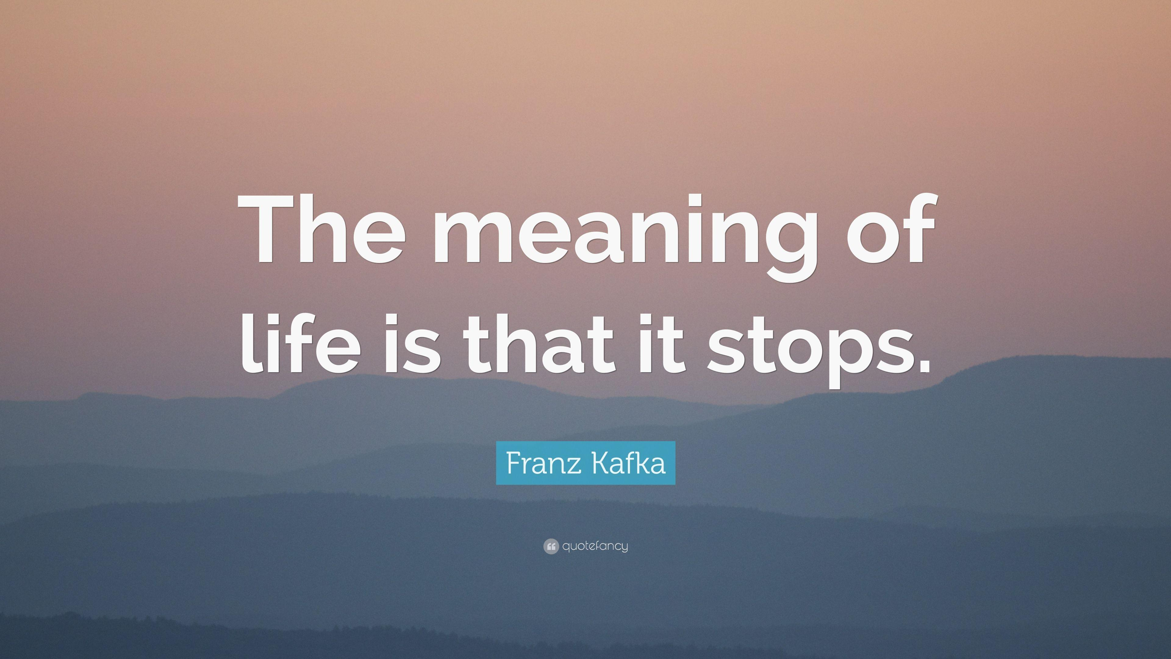 Kafka Quote Meaning Of Life: Meaning Of Life Quotes Wallpapers