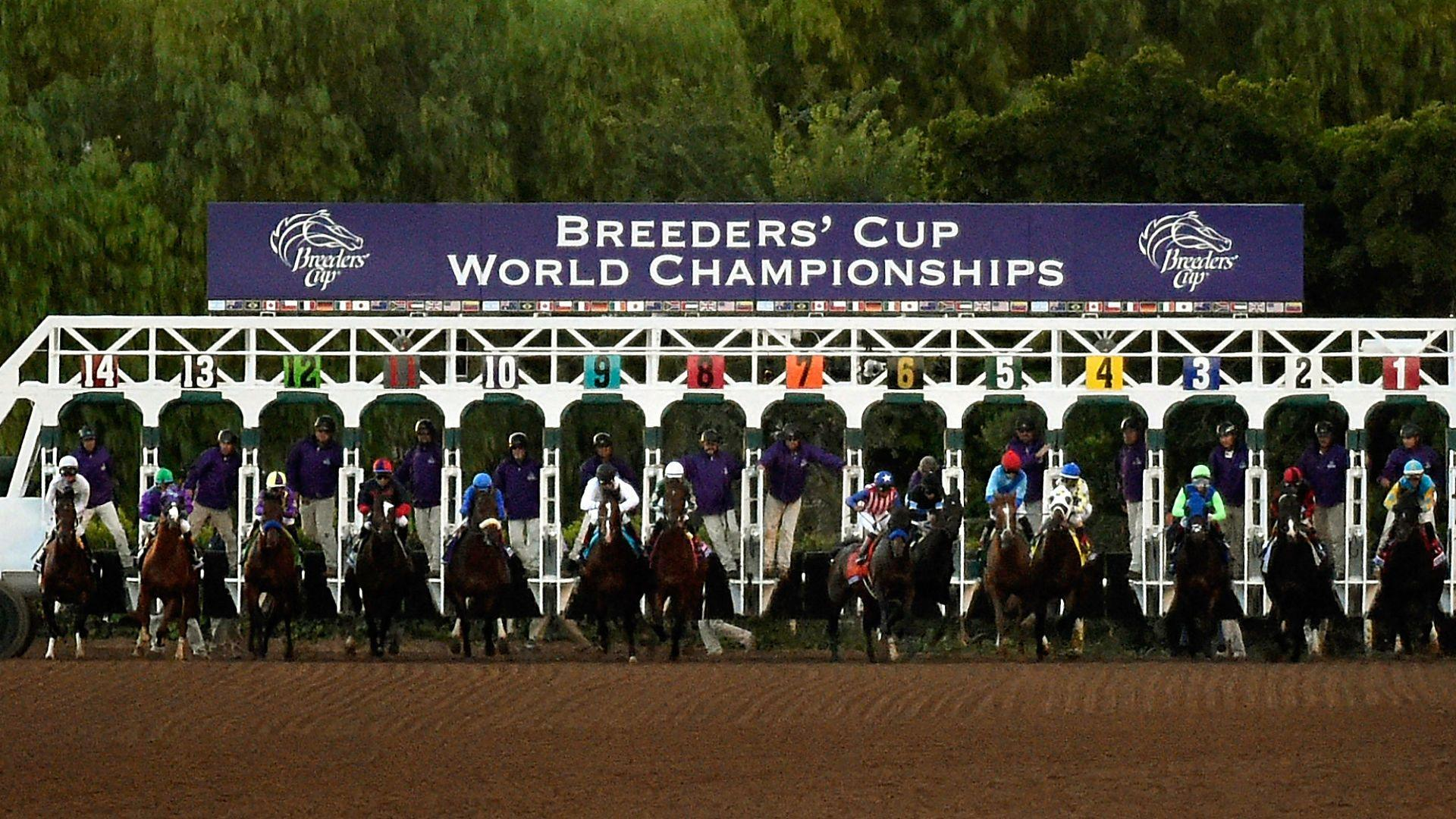 Breeders Cup Ticket Packages including intrack hospitality twoday tickets local hotel accommodations VIP extras and more!
