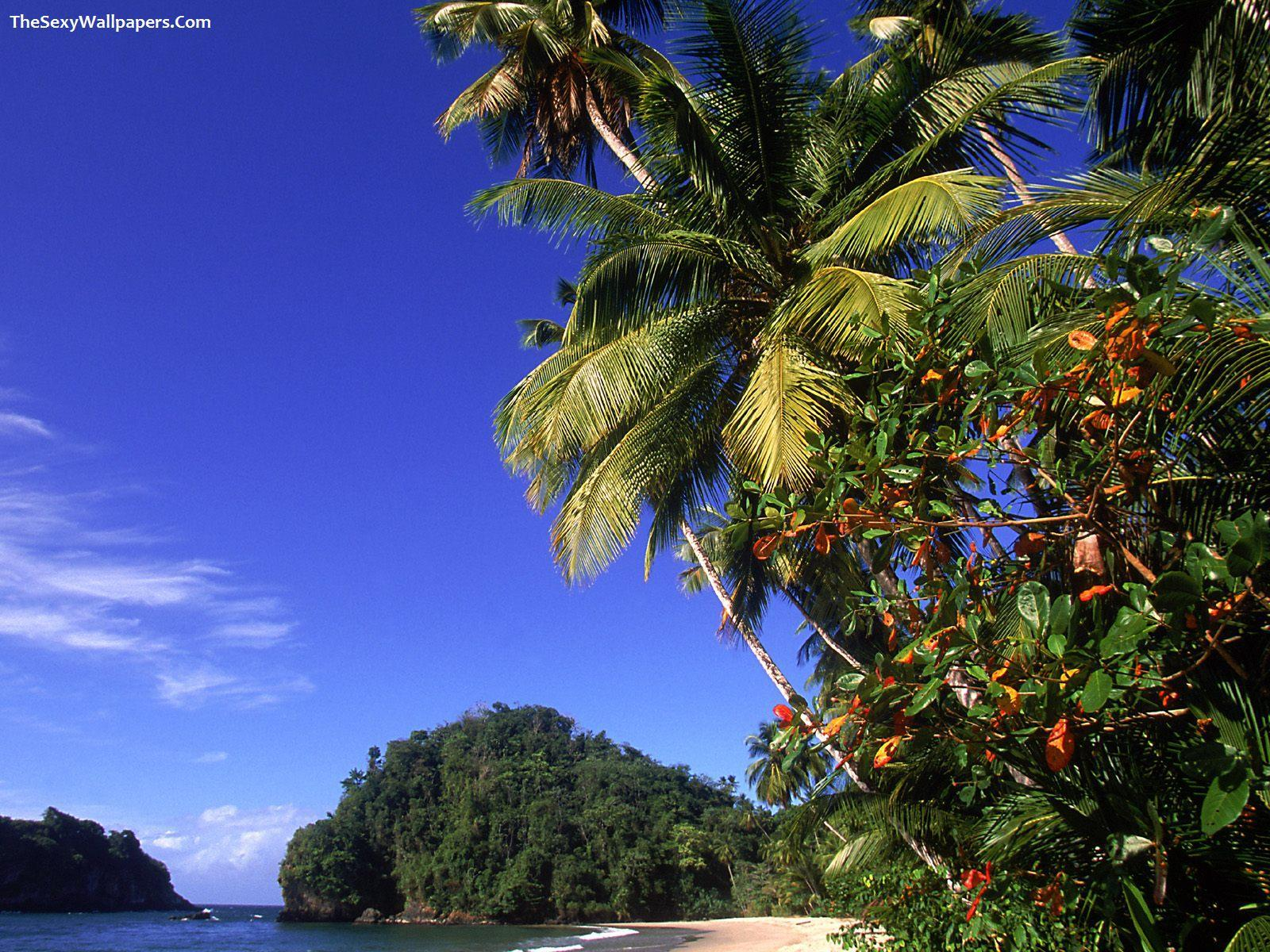 Paria Beach Trinidad Wallpaper - The Sexy Wallpapers