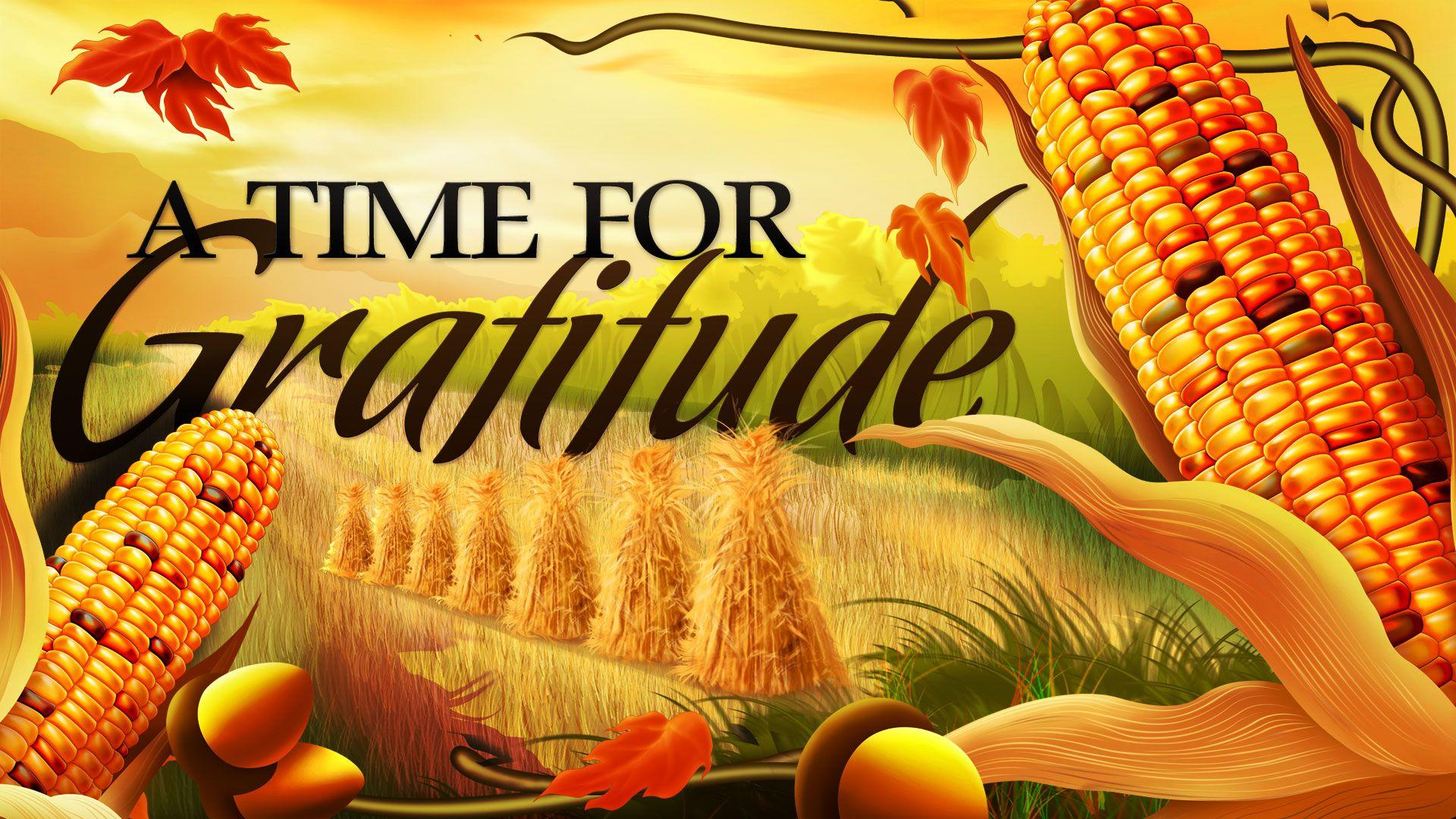 Thanksgiving Corn Wallpapers - Wallpaper Cave