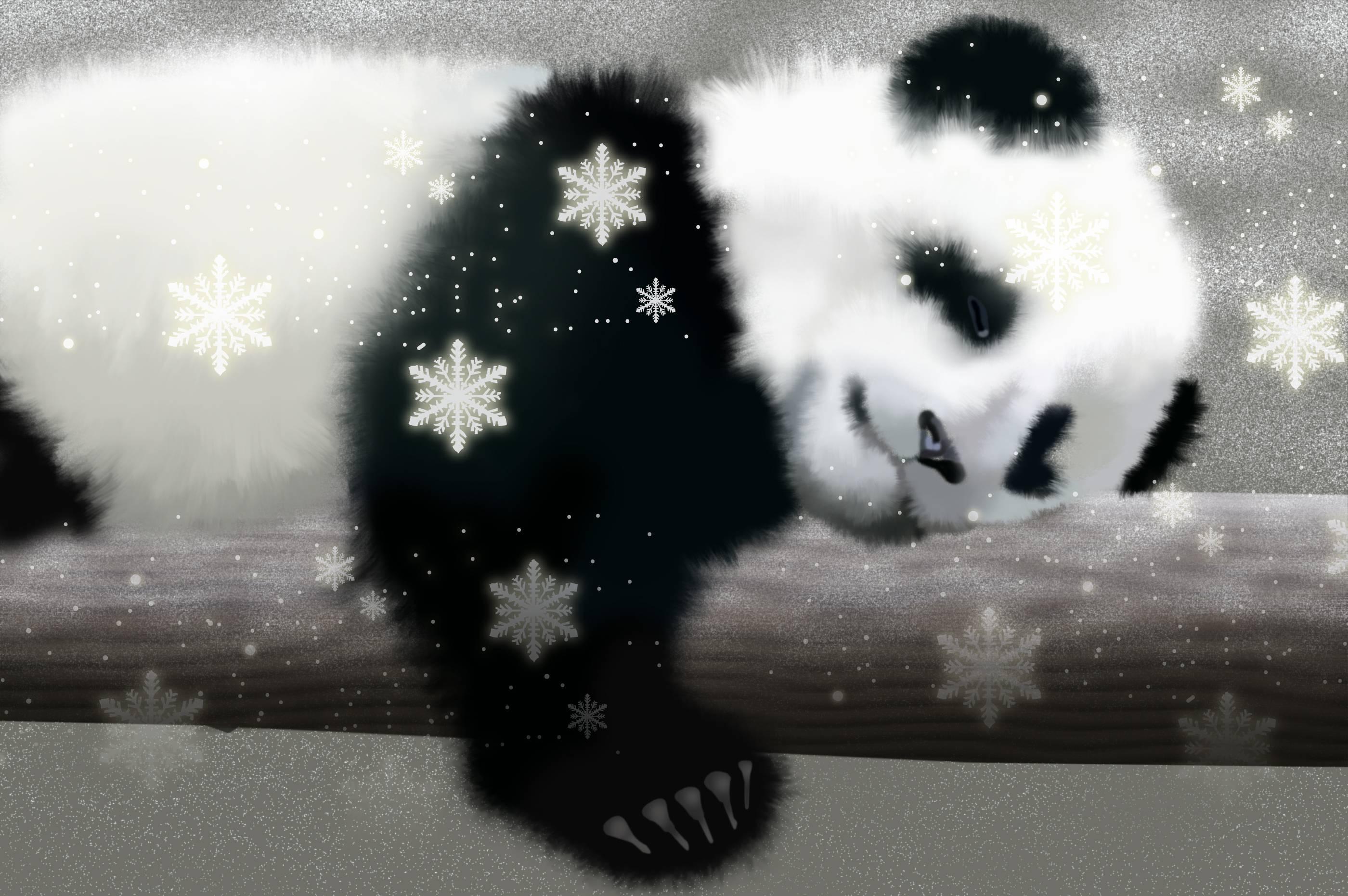Cute Baby Panda Wallpapers Desktop for Desktop Background | 3D .