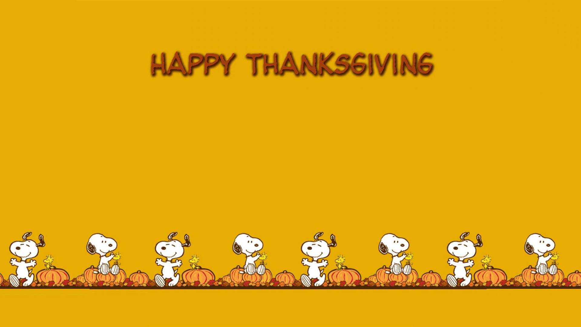 Funny Thanksgiving Wallpaper Backgrounds #6977481