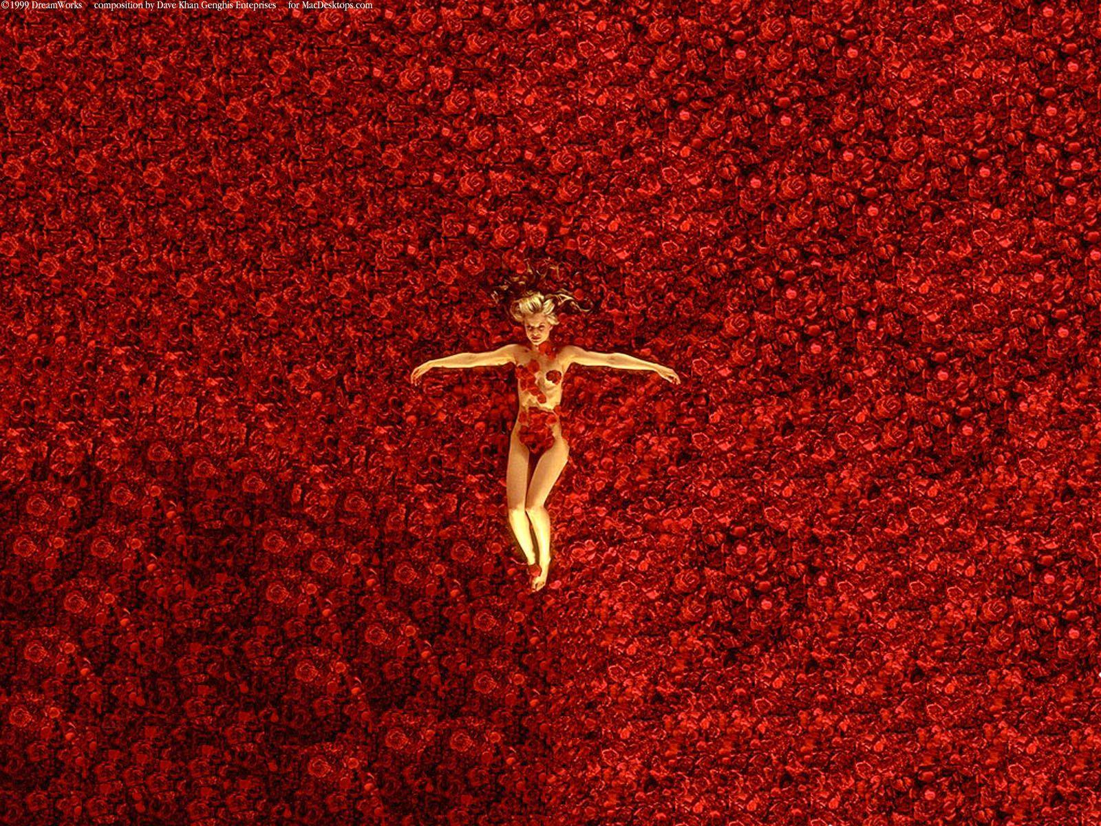 American Beauty Wallpapers