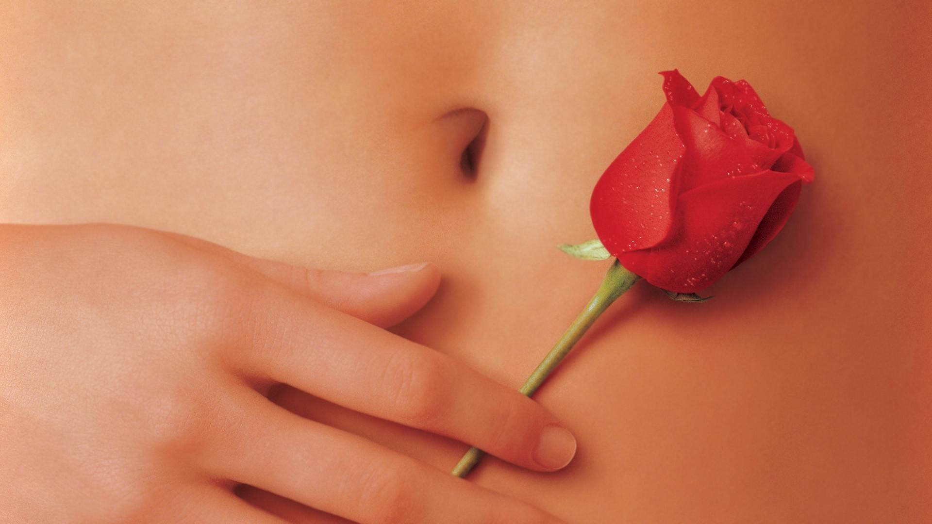 3 American Beauty HD Wallpapers