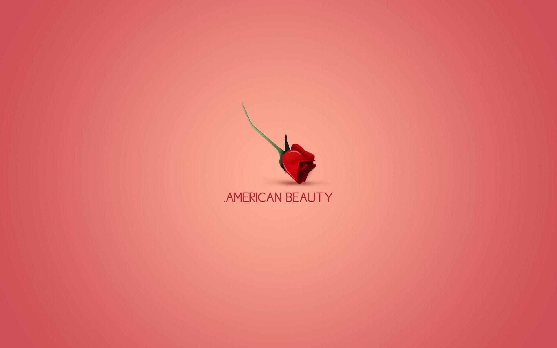 minimalistic, movies, American Beauty :: Wallpapers
