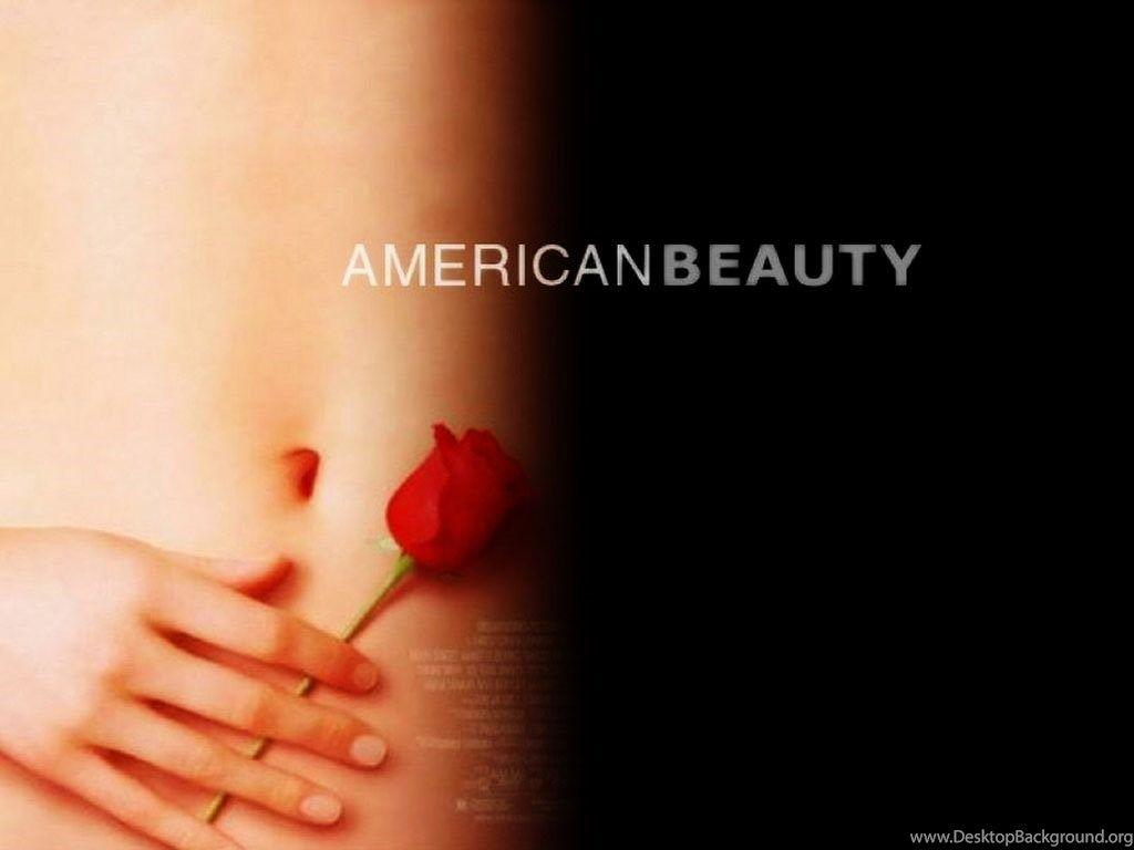 American Beauty Wallpapers Wallpapers