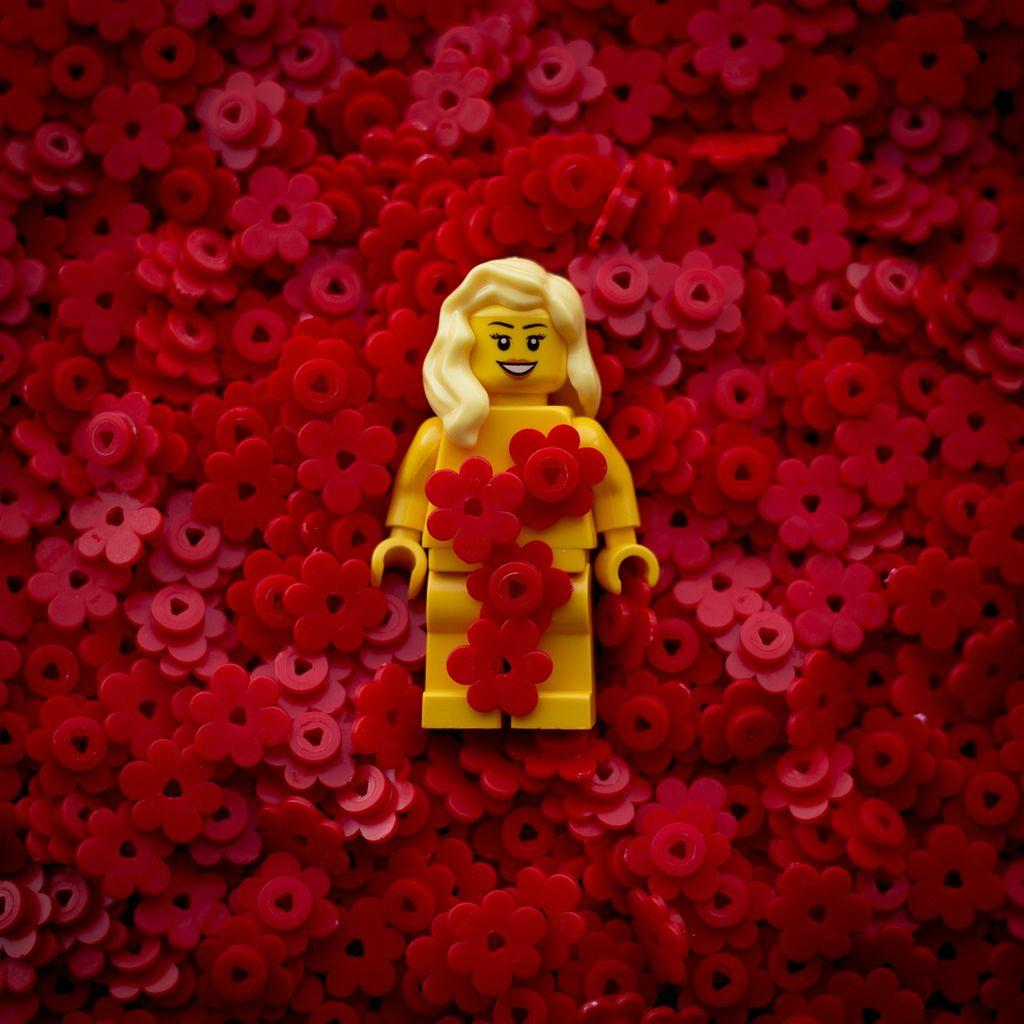 Lego American Beauty | Wallpapers & Cool Photos | Pinterest