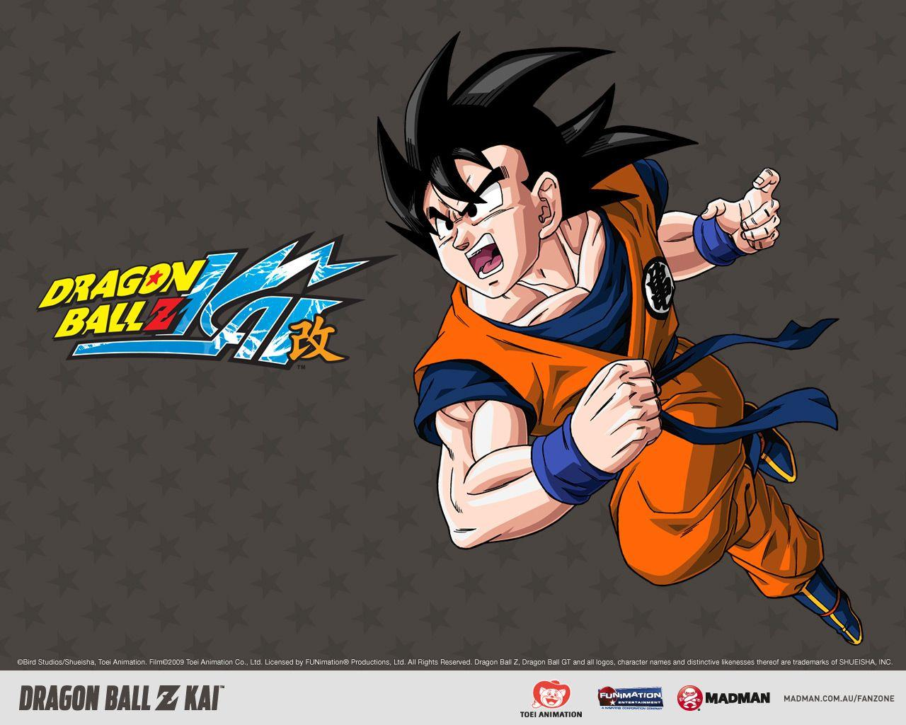 Search results for 'dragon ball z'