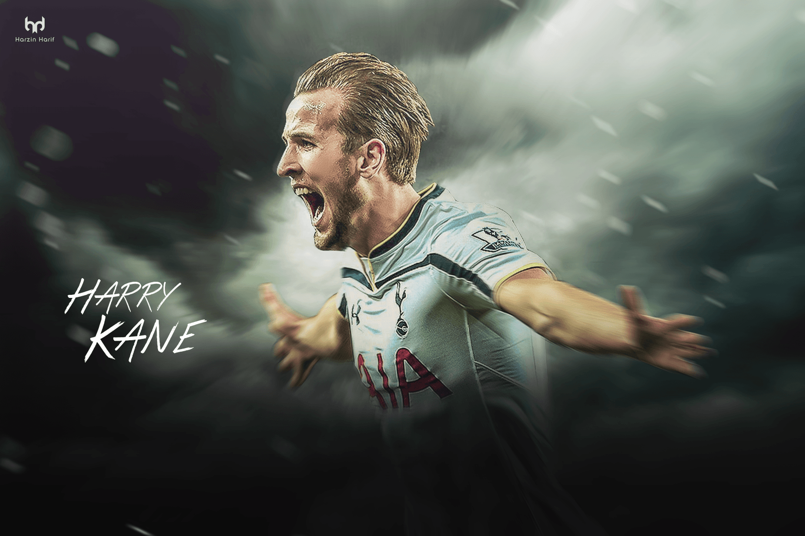 Tottenham Hotspur F.C. 2017 Wallpapers