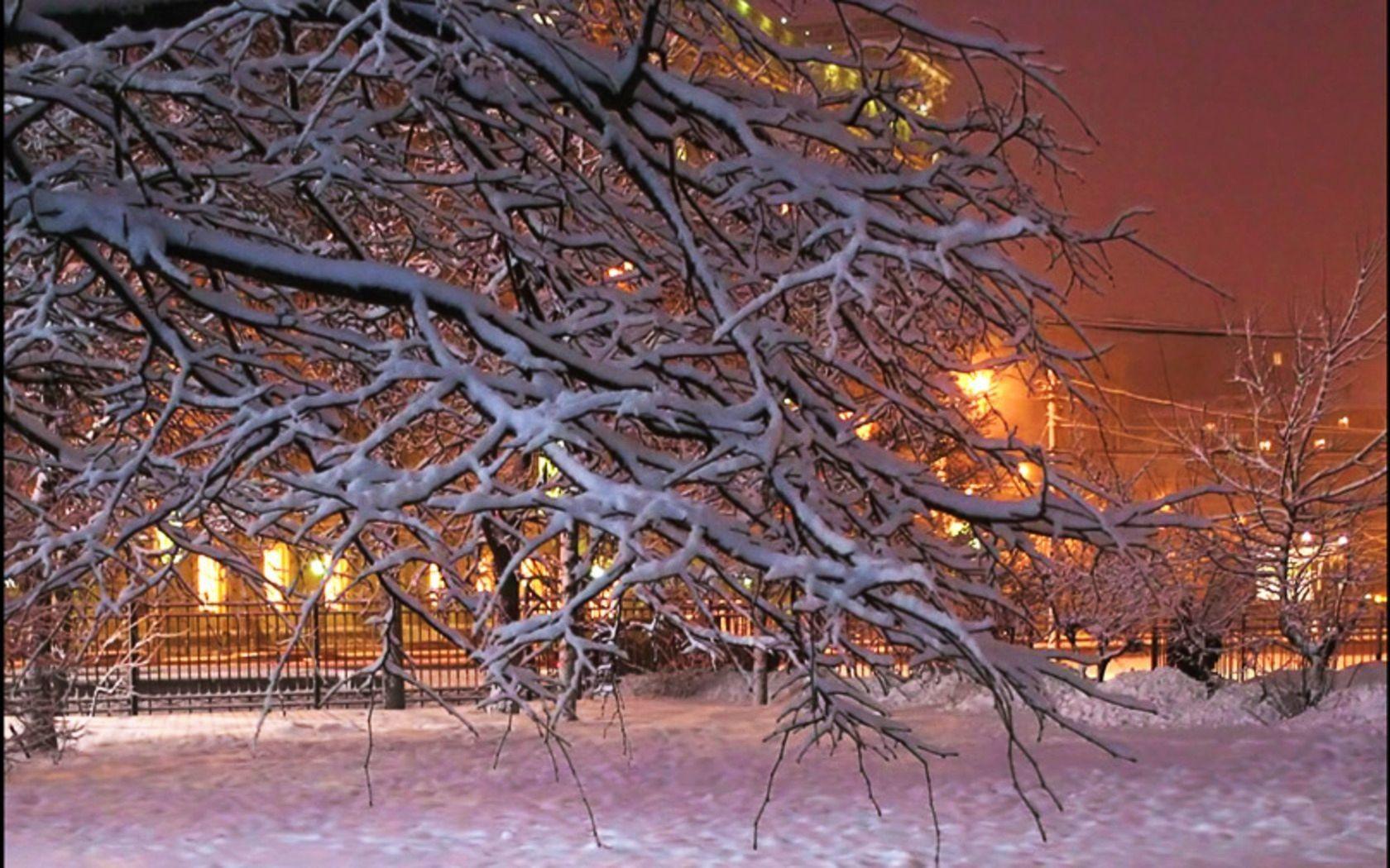 Winter: House Twigs Lights Snow City Tree Winter Wallpaper Scenes .