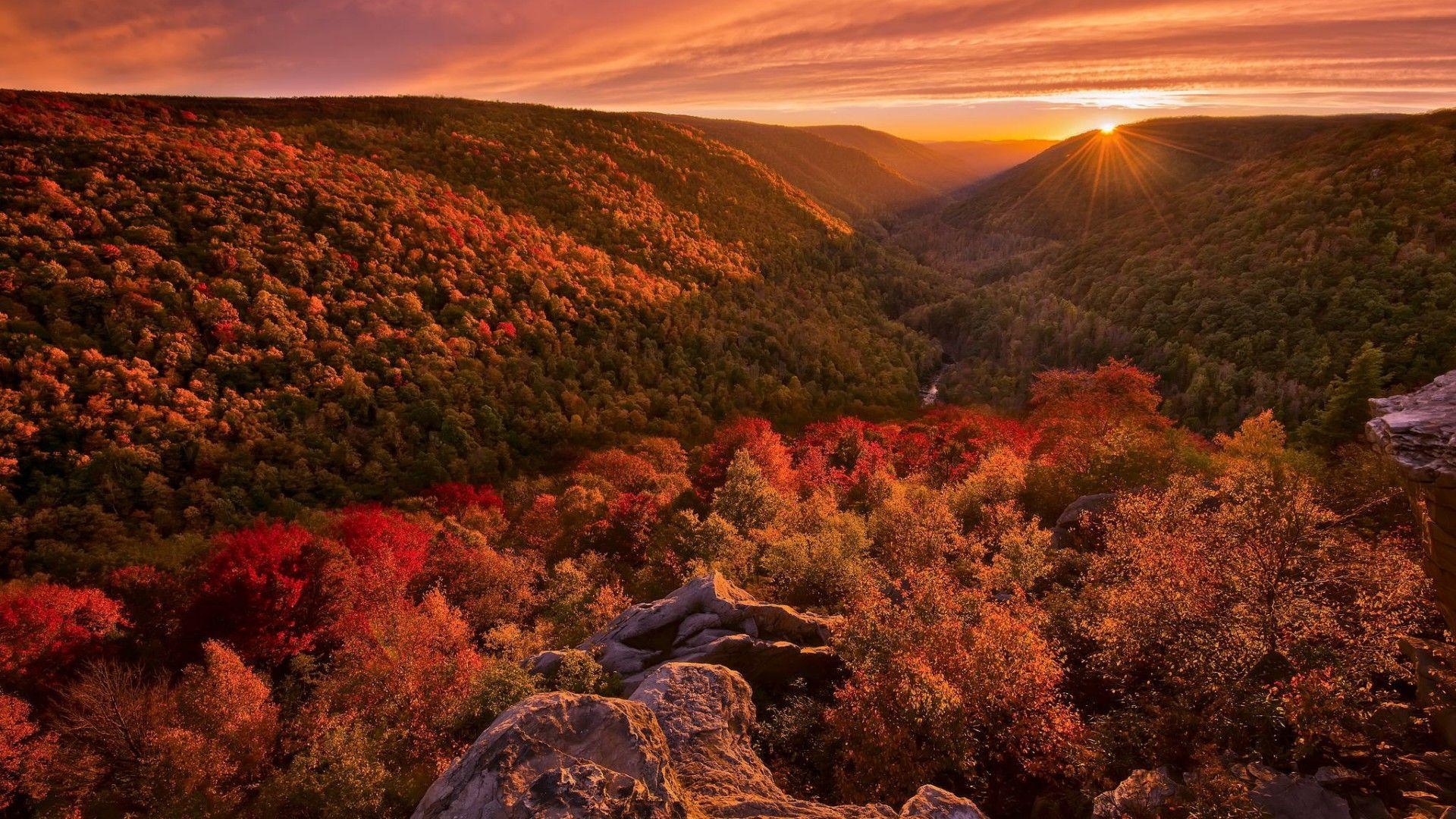 Autumn At Blackwater Falls State Park West Virginia Wallpapers