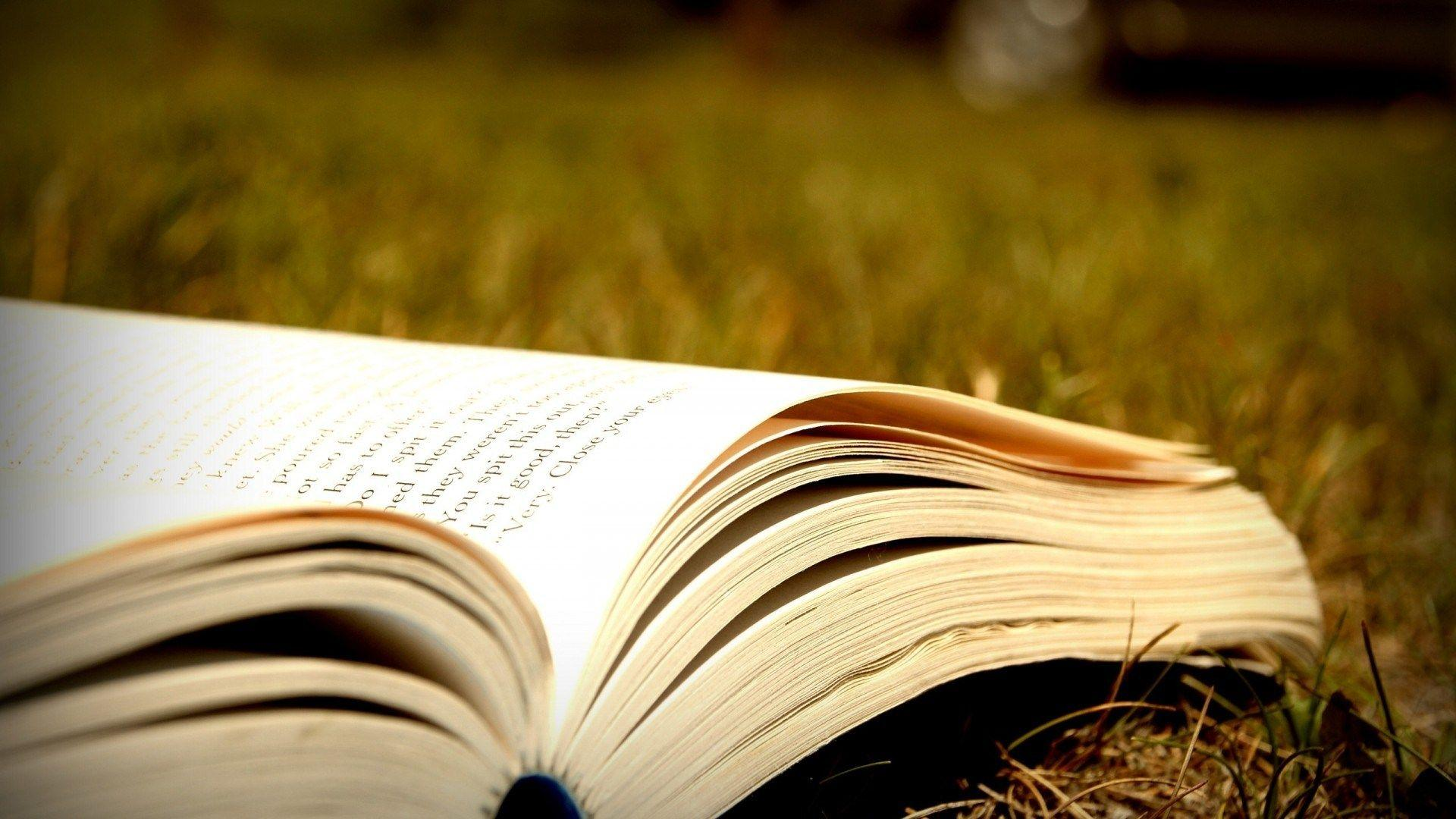 Reading Books Wallpapers