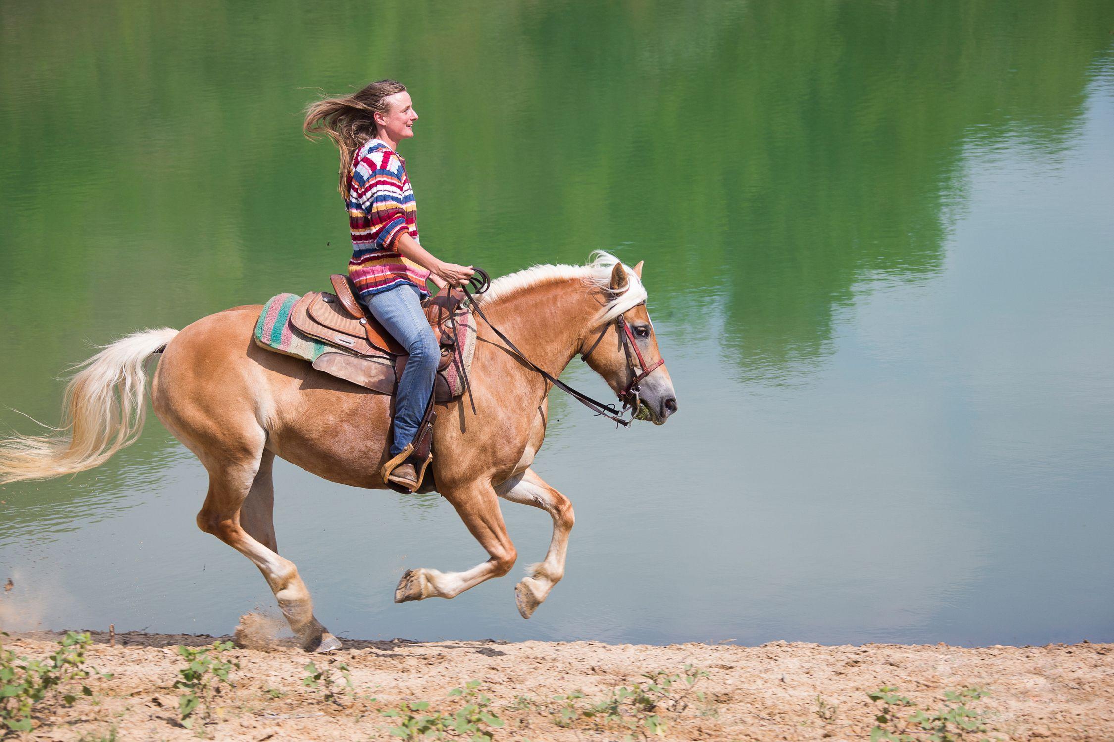 Horse rider wallpaper - photo#32