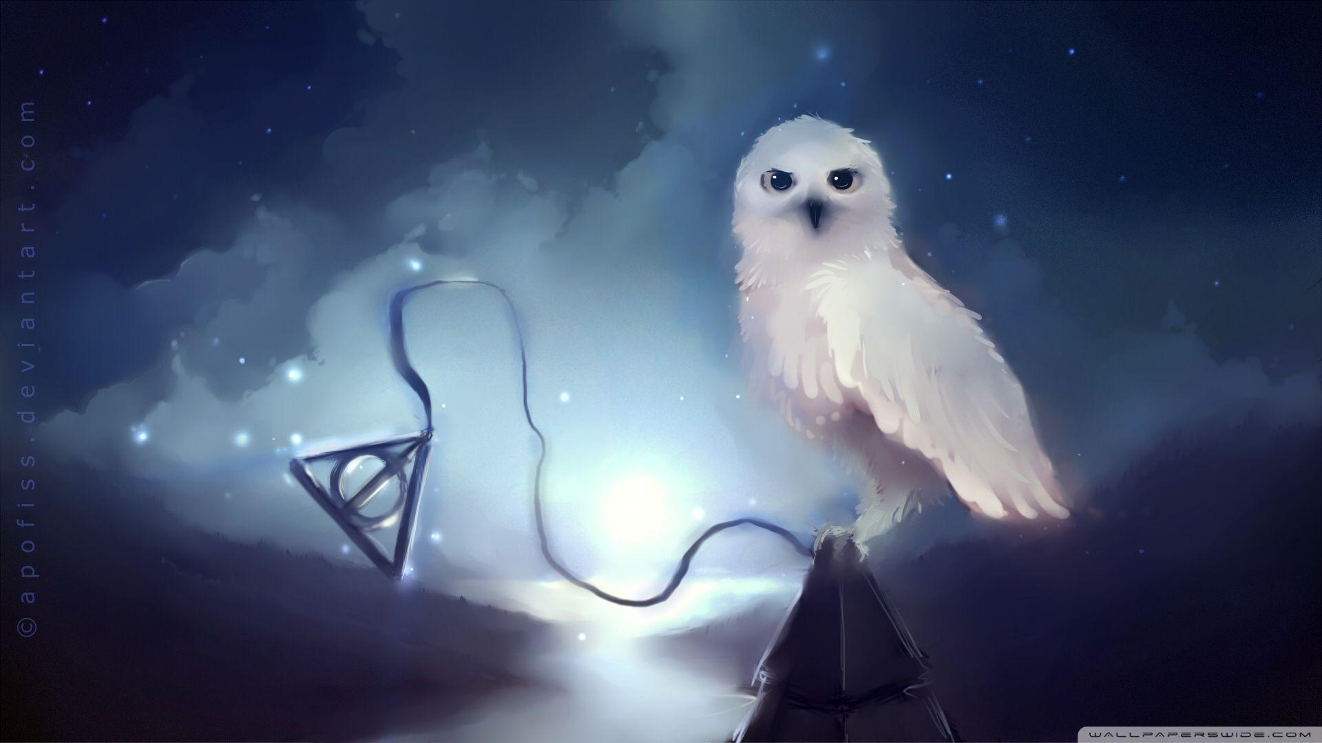 Snowy Owl HD Wallpapers Backgrounds Wallpaper Page | Wallpapers 4k ...