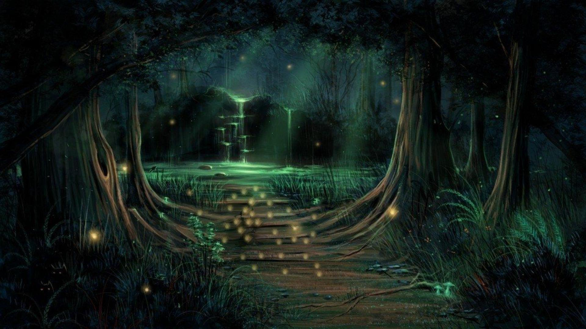 Magic Forest Wallpapers Wallpaper Cave