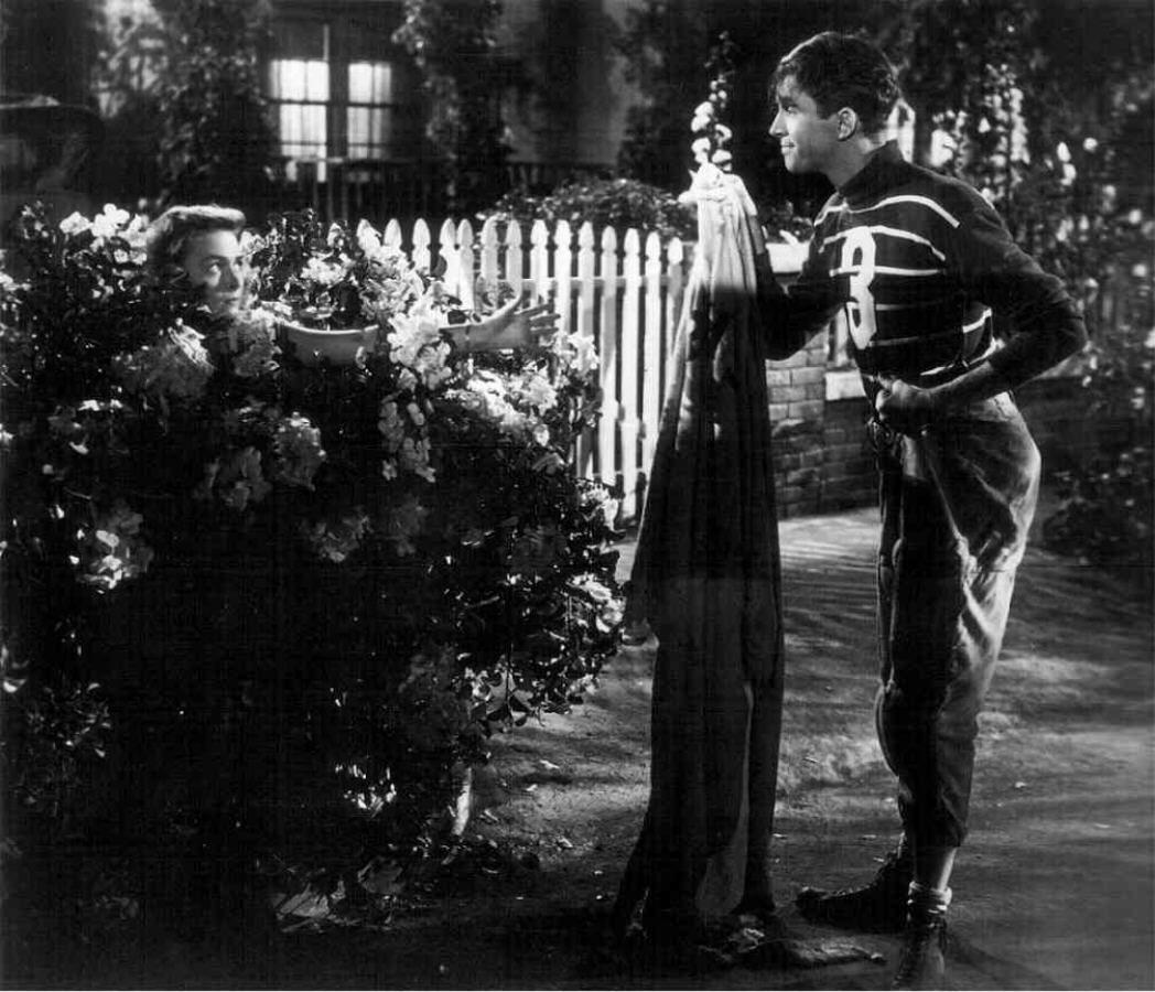 Picture of It's a Wonderful Life