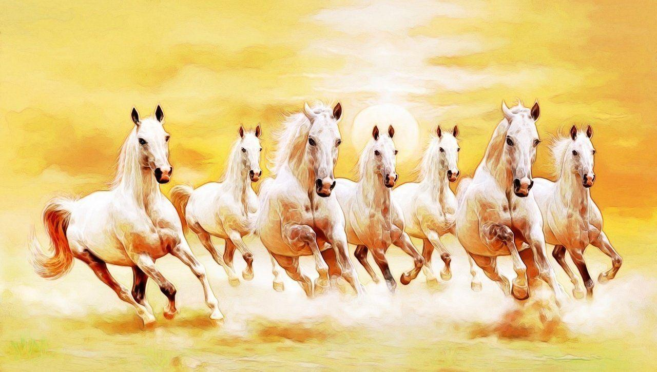 7 running horse wallpaper desktop background: Seven Horses Wallpapers