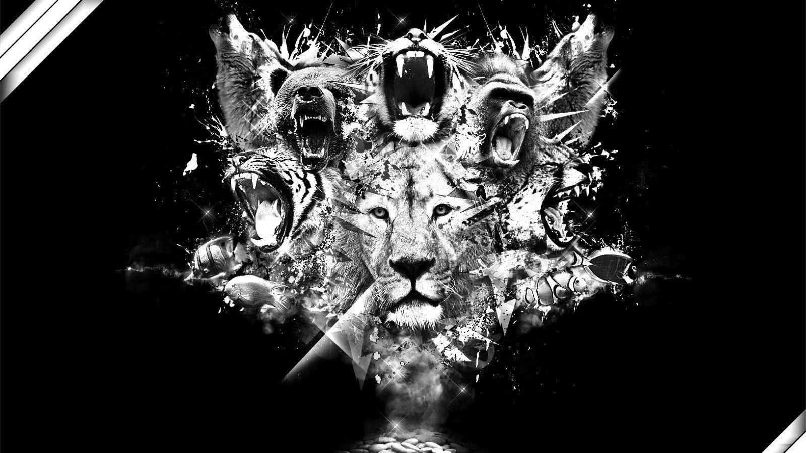 Lion Logo Wallpapers Wallpaper Cave