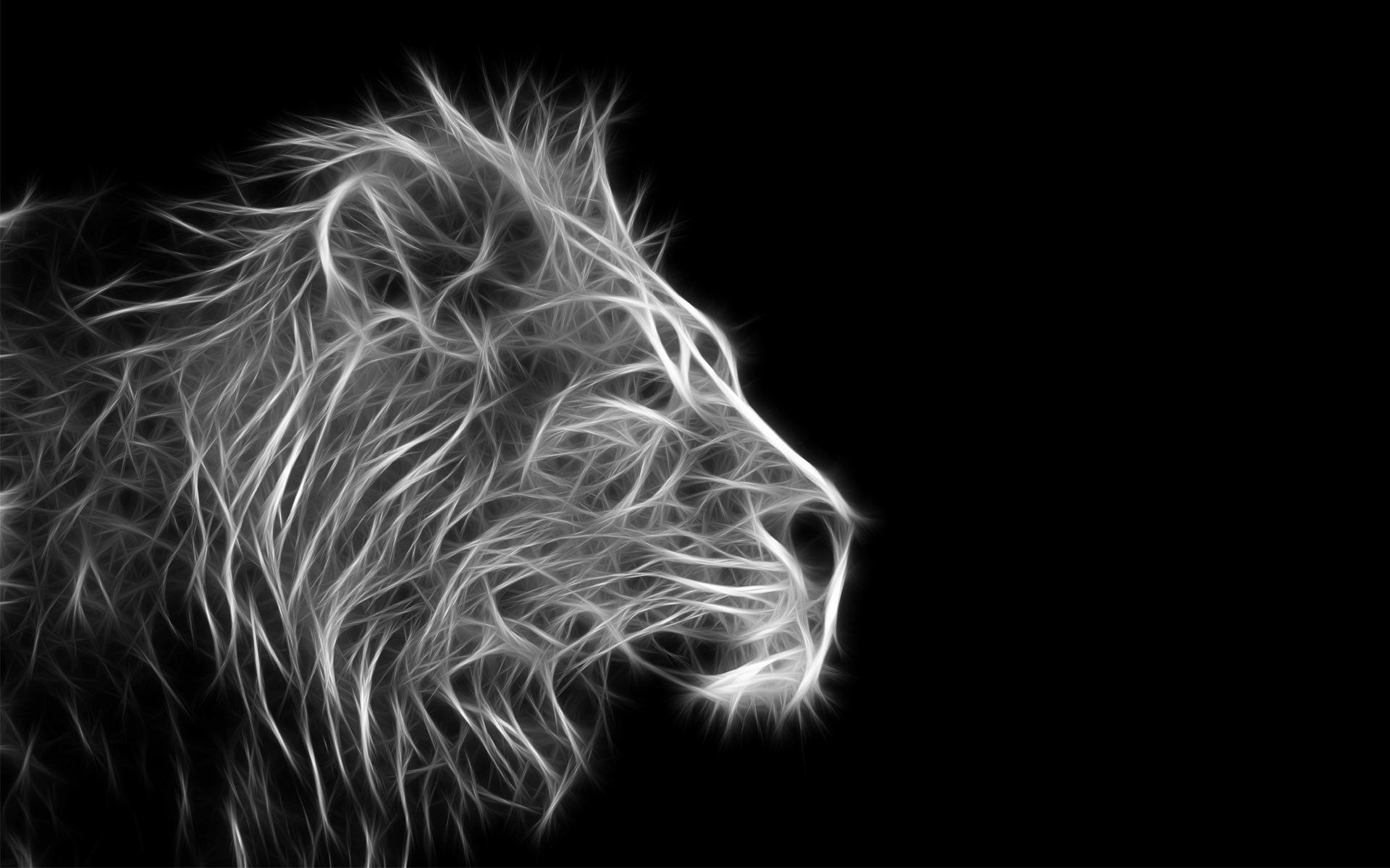 Lion Black And White Backgrounds For Desktop Wallpapers « Long