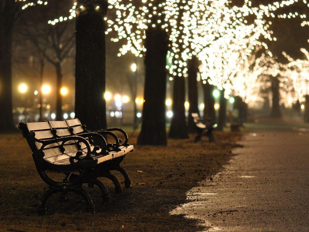 fairy lights garden tumblr ideas – Home Furniture Ideas