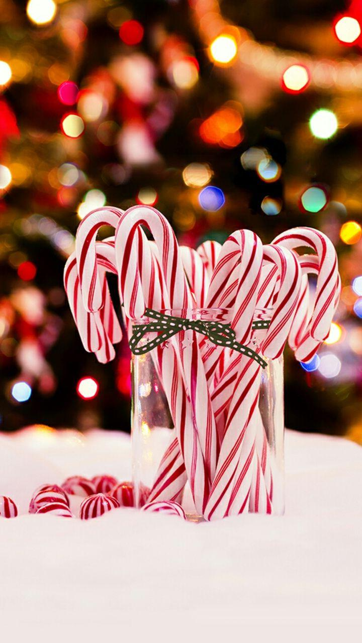 Download Christmas Candy Cane Wallpapers free for mobile