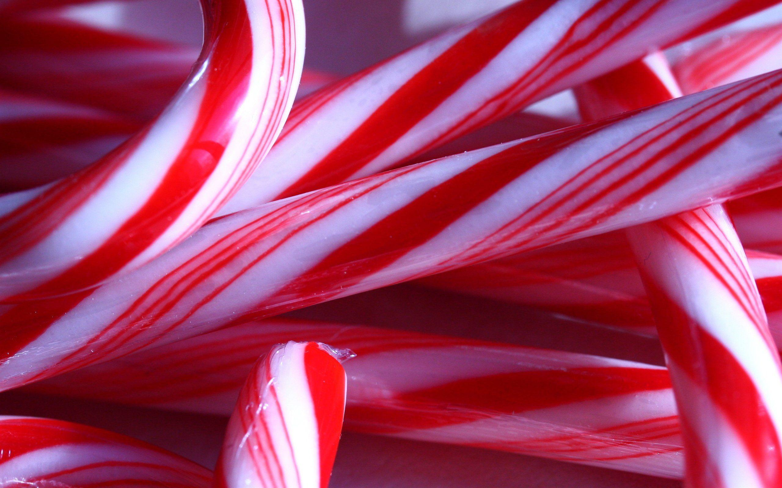Candy Cane Up Close Wallpaper Backgrounds 52139 2560x1600 px