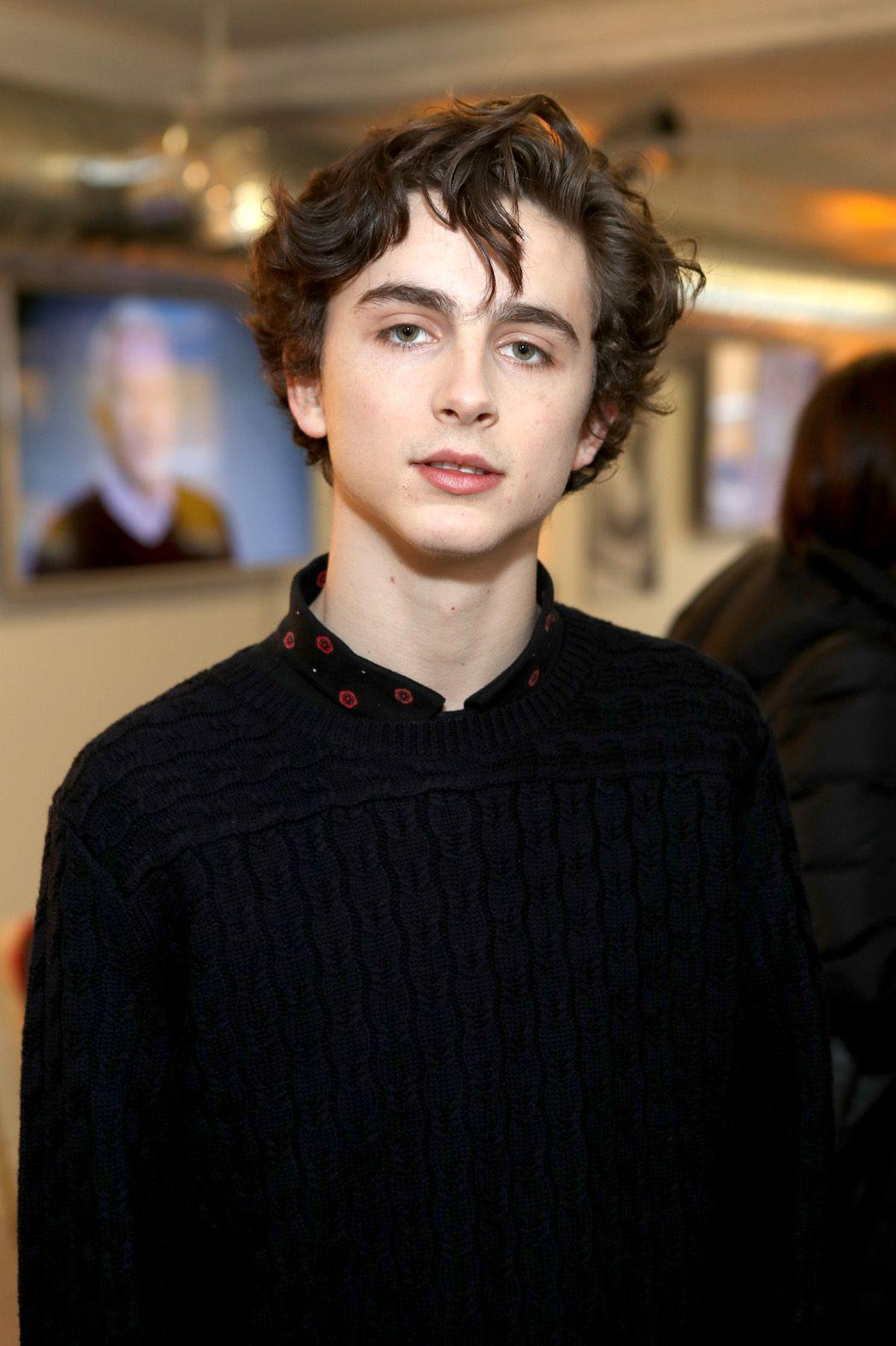 Timothee Chalamet photo 30 of 33 pics, wallpaper - photo #975208 ...