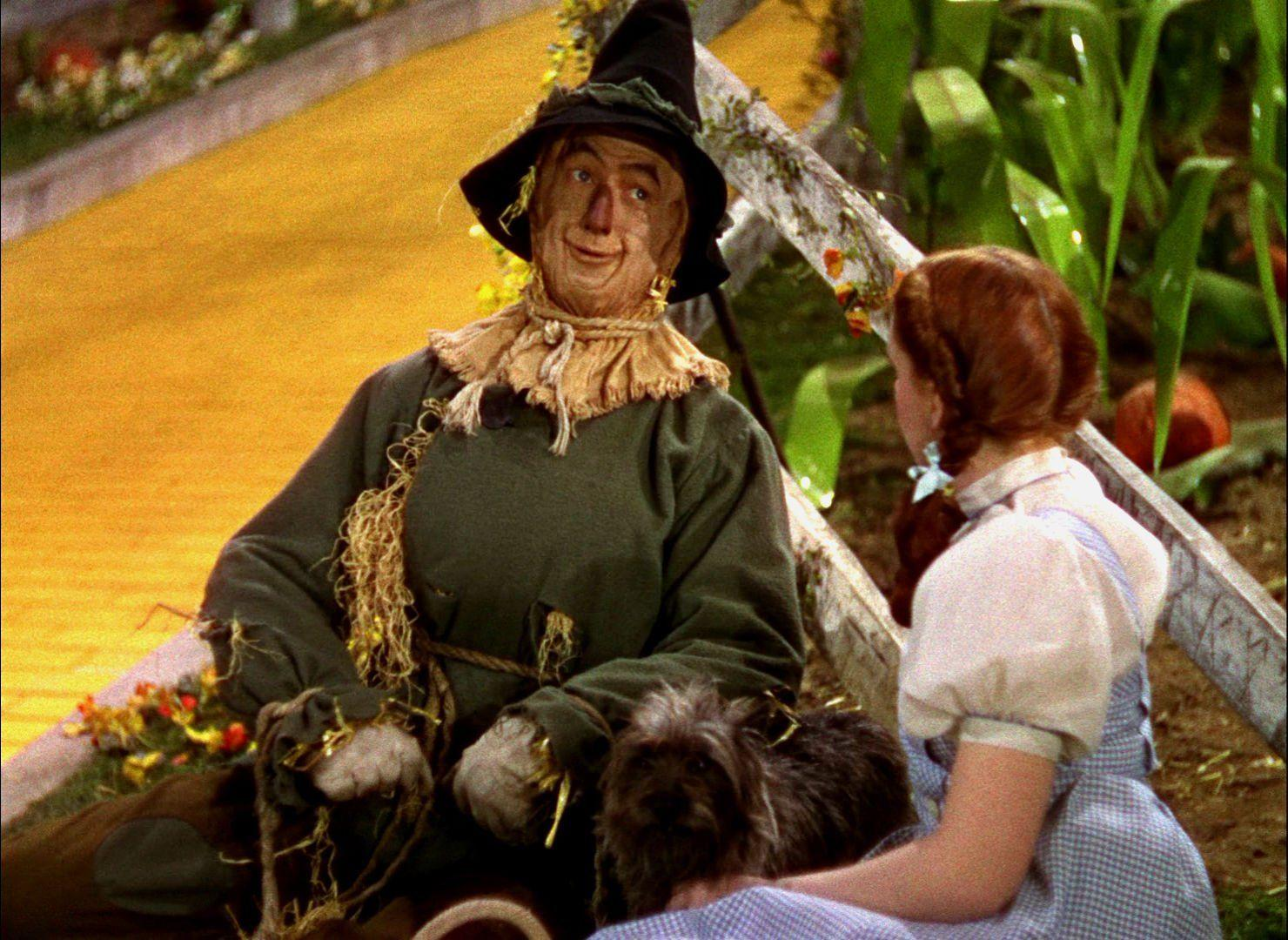 The Wizard Of Oz The Scarecrow Wallpapers Wallpaper Cave