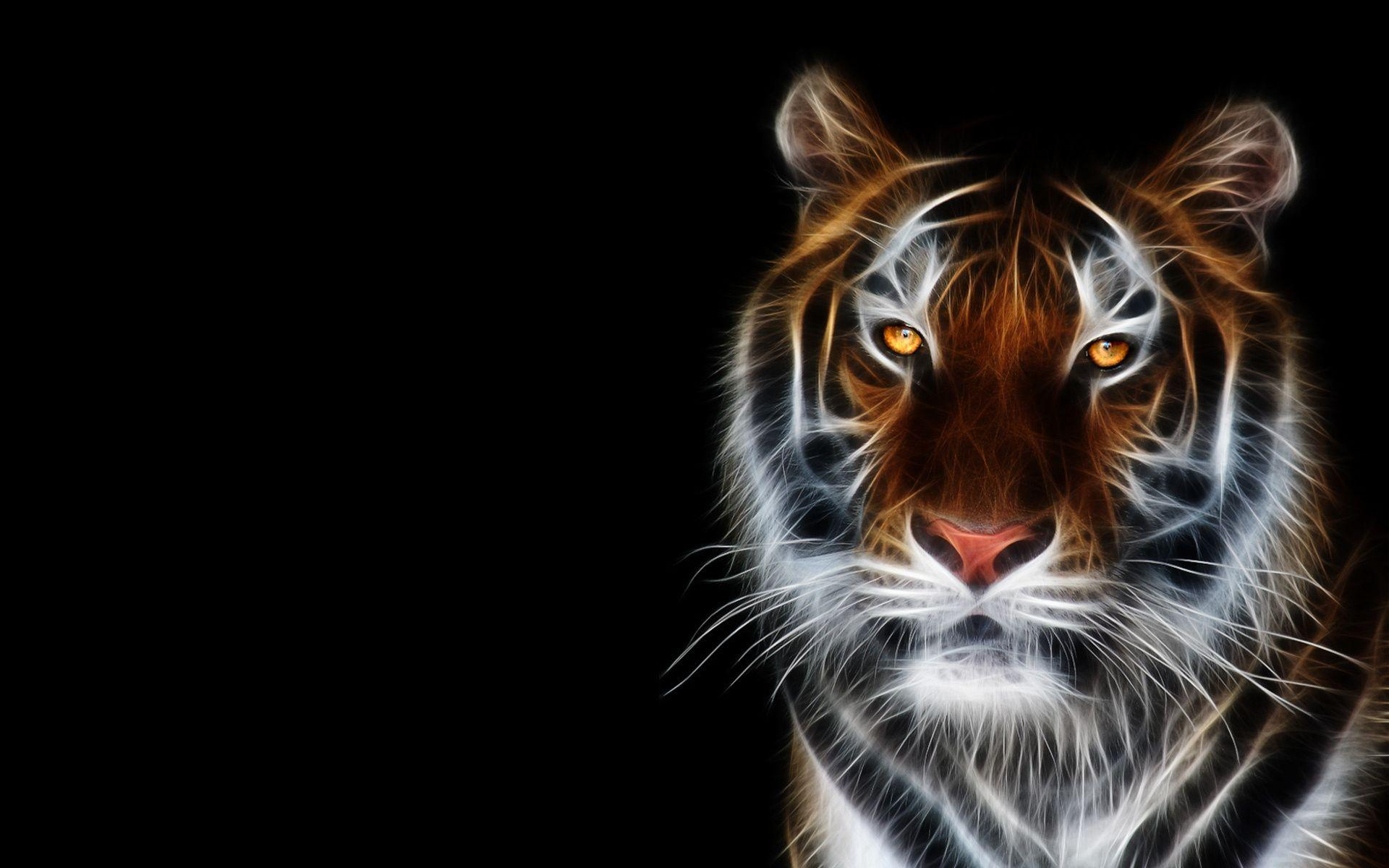 Wallpapers Collection «Animals