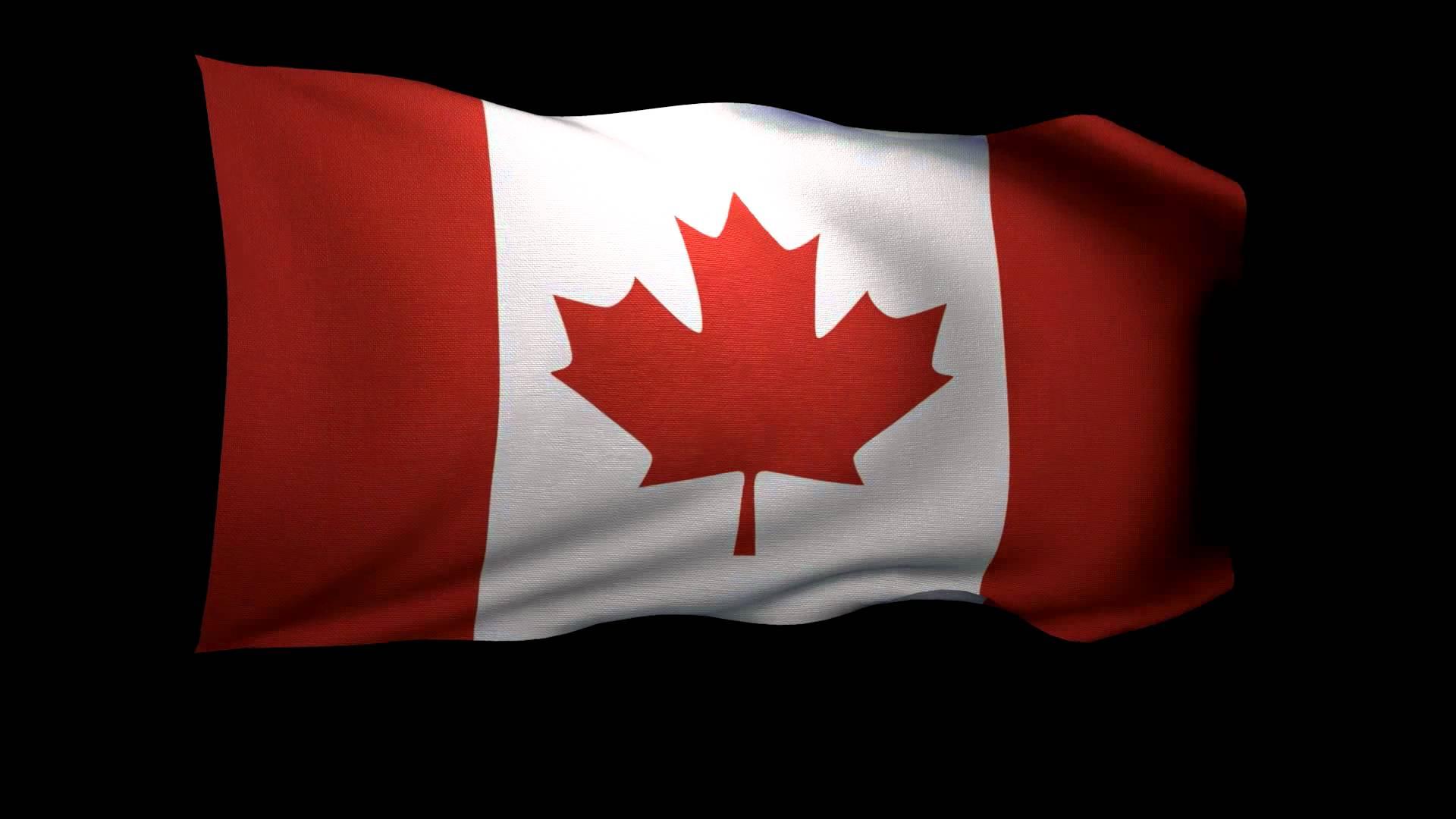 канадский флаг фото привлекательная девушка