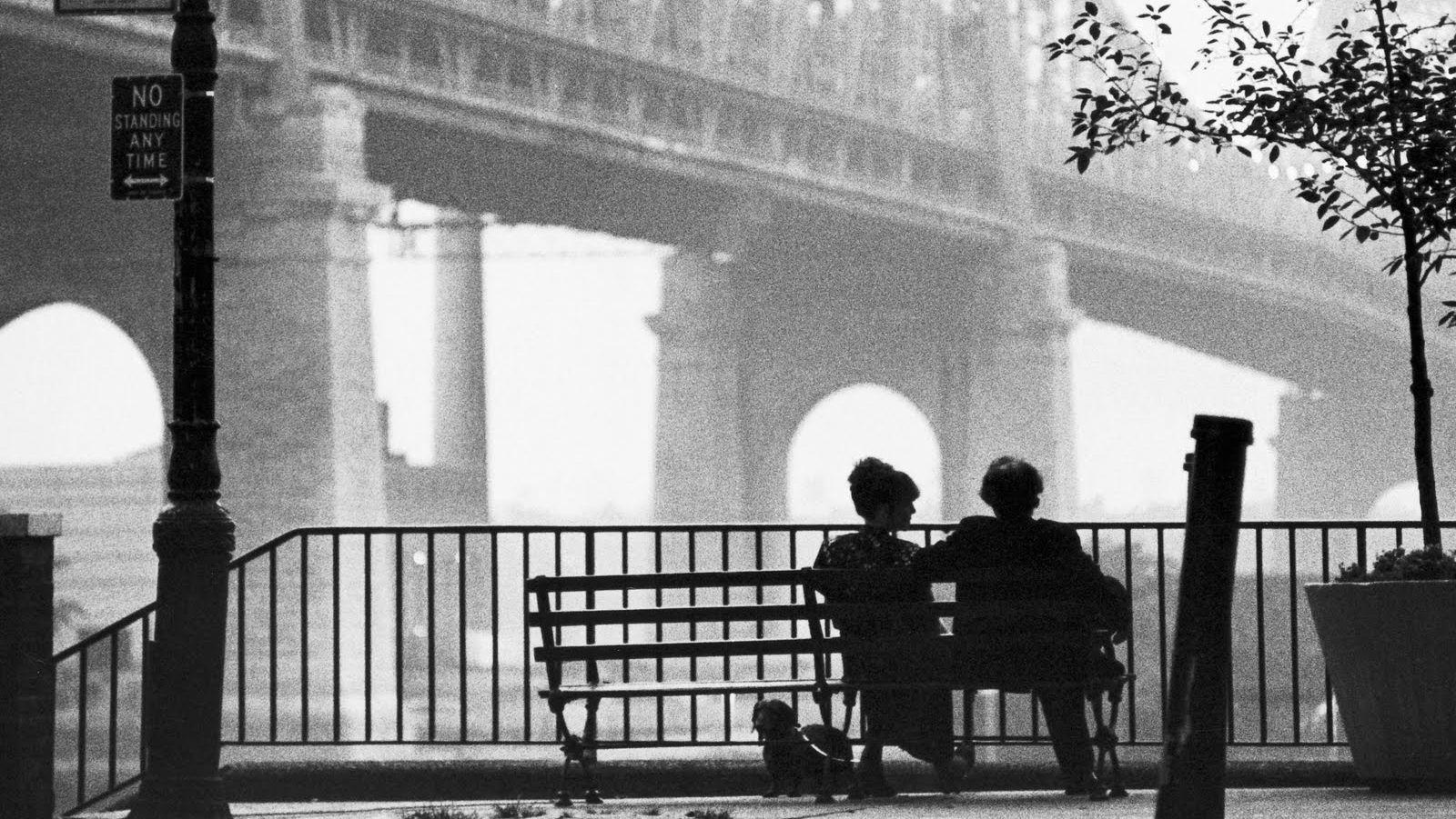 Woody Allen Film Wallpapers
