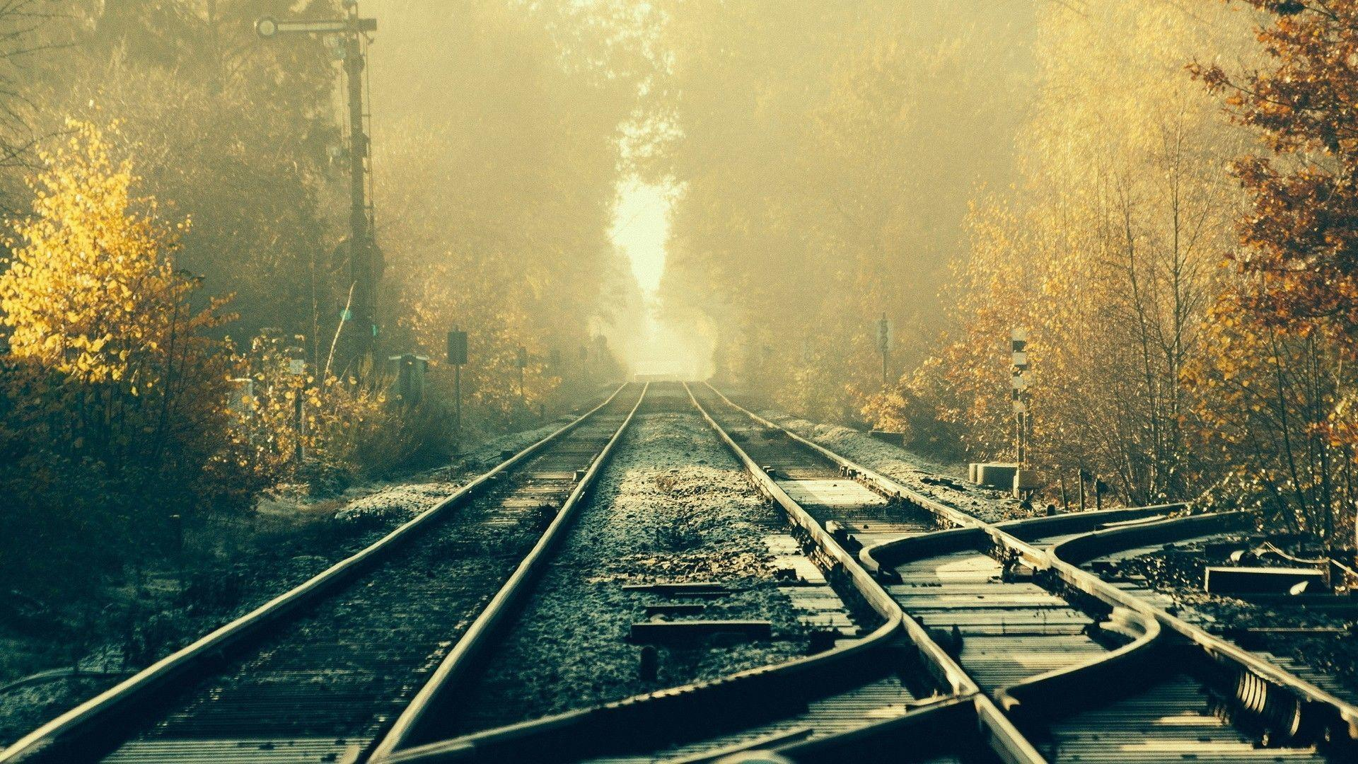 train, Railway, Tracks, Forest Wallpapers HD / Desktop and Mobile