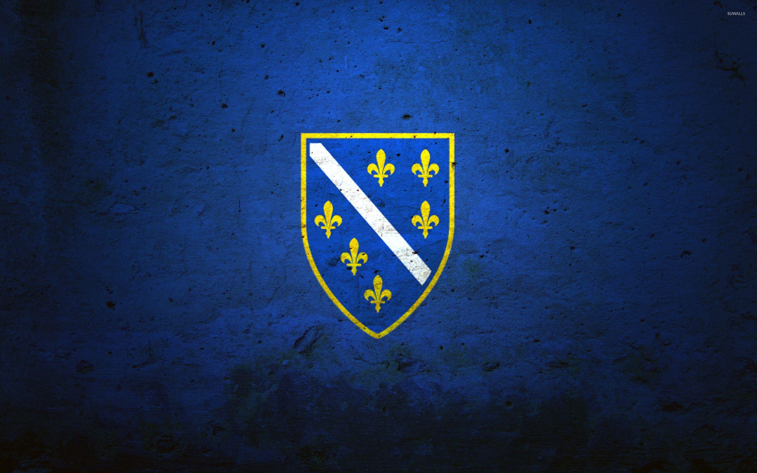 Flag of the Bosnian Kingdom wallpaper - Digital Art wallpapers - #43247