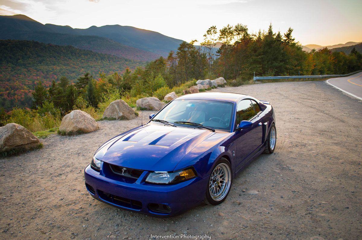 Terminator Mustang Years