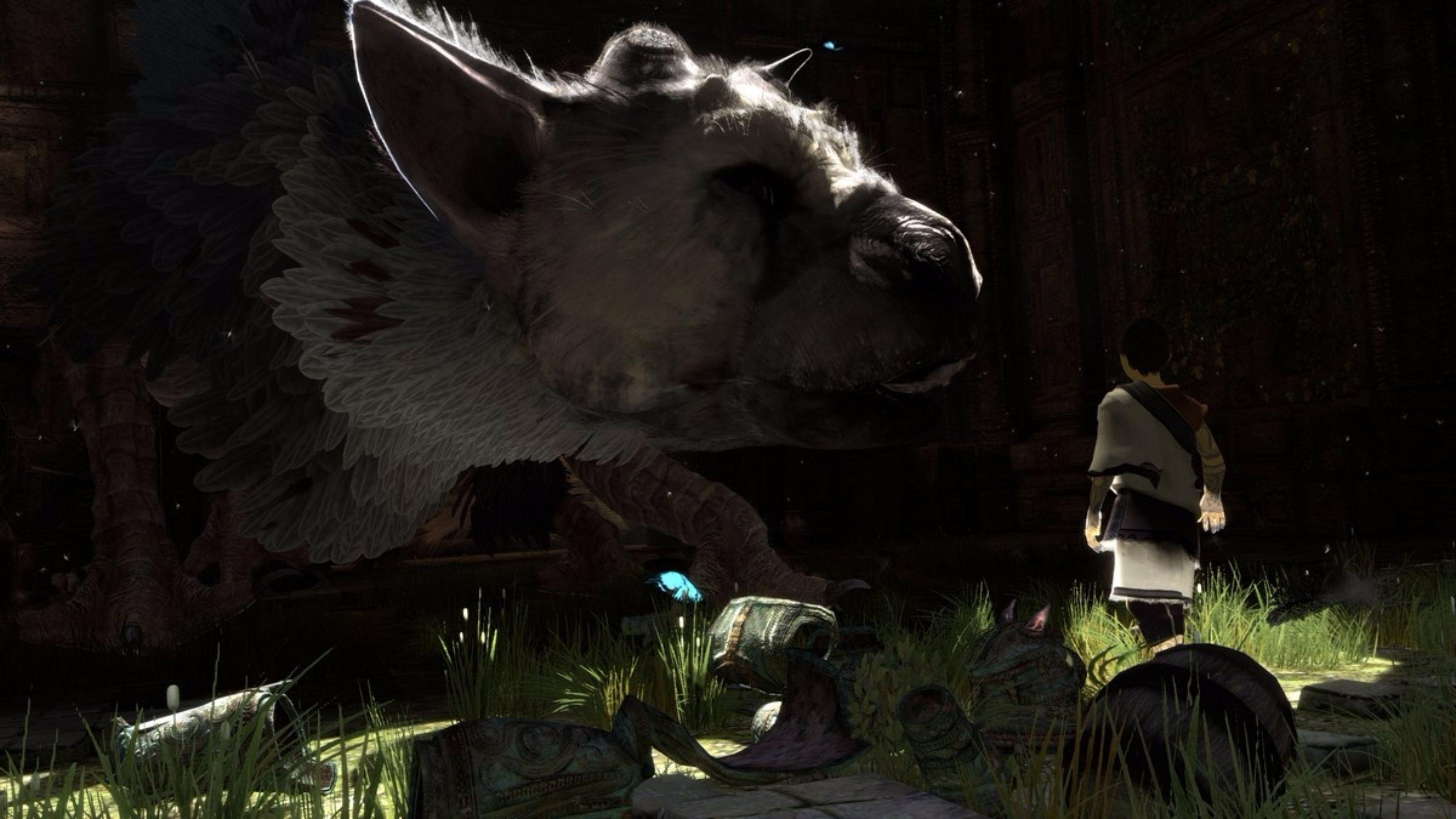 The Last Guardian Wallpapers Wallpaper Cave