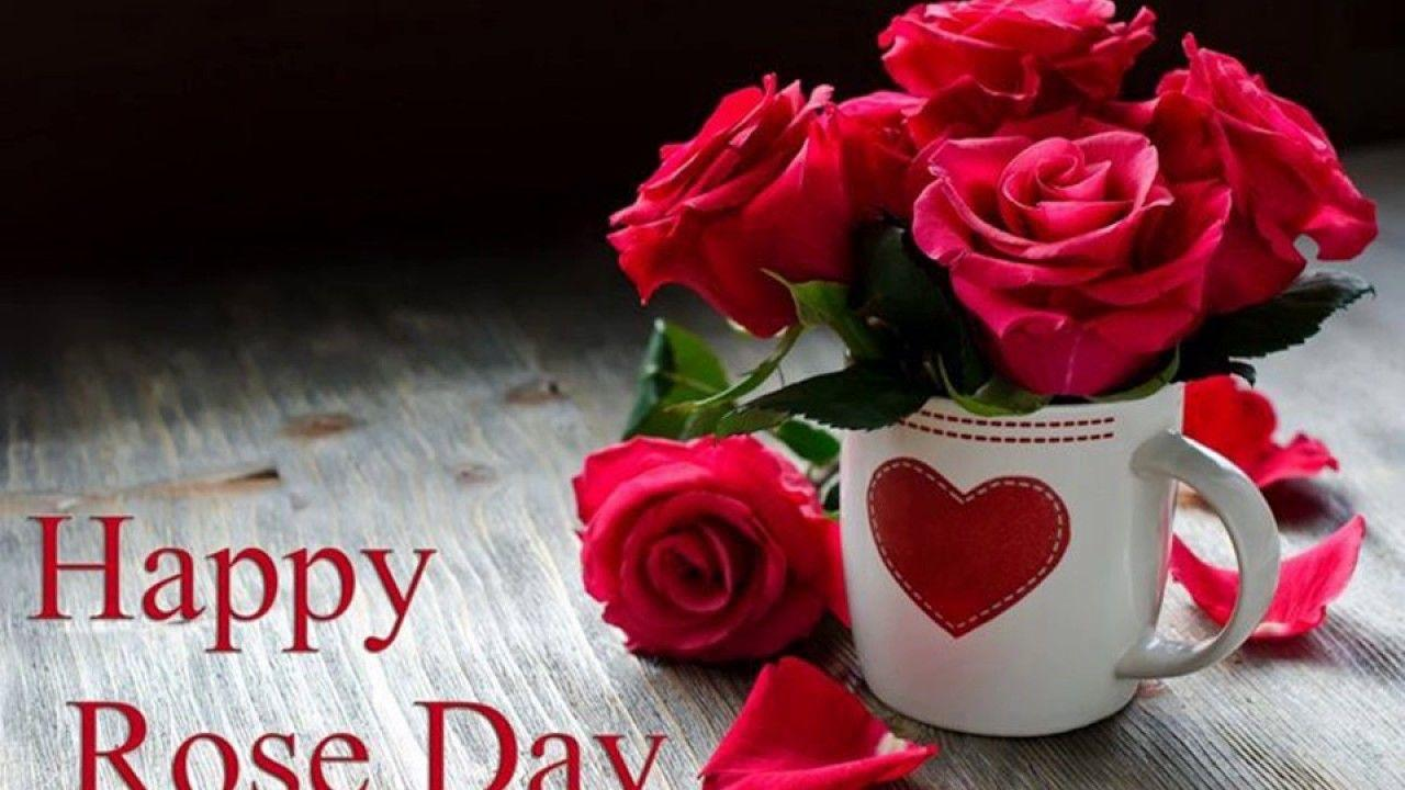 Happy Rose Day 2017 Images Wallpapers Video Download