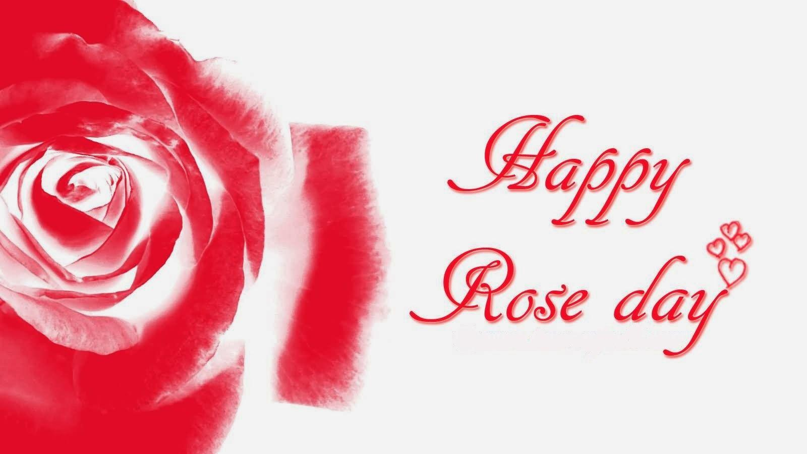 Rose Day - Valentine Day - 7 February   IMAGES, GIF, ANIMATED GIF, WALLPAPER, STICKER FOR WHATSAPP & FACEBOOK
